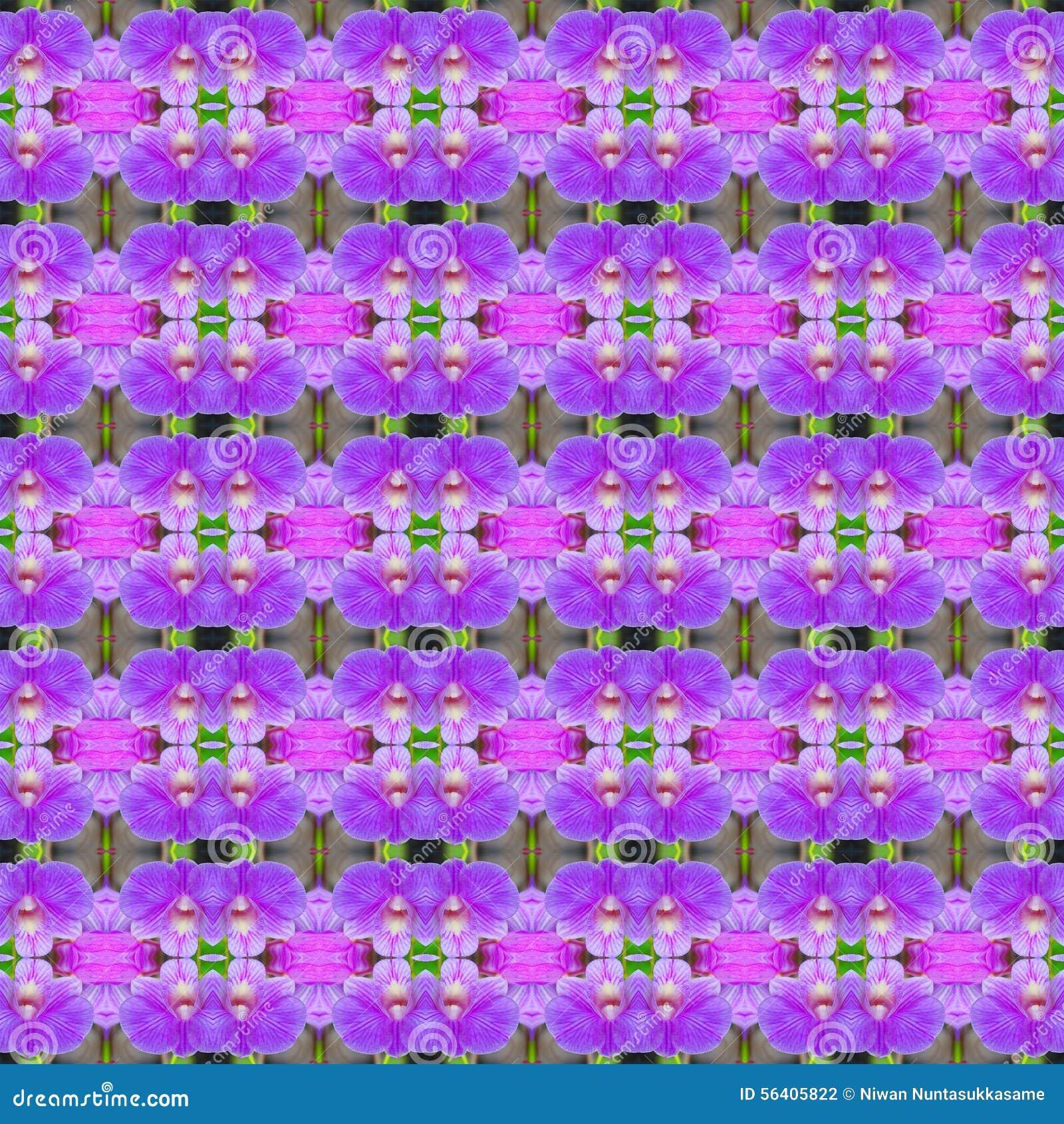 美妙无缝花束紫色兰花的花