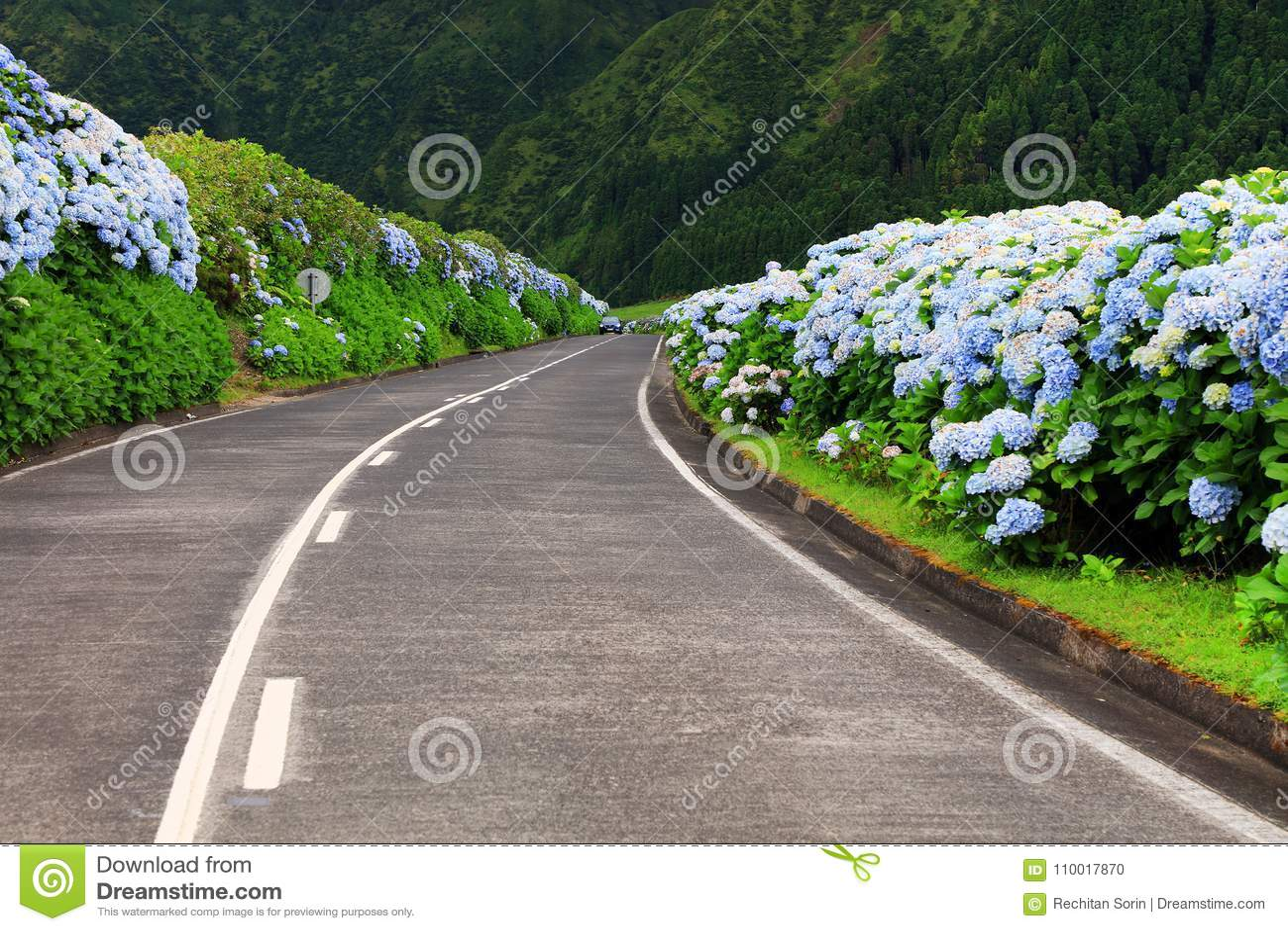 美妙的路在圣地米格尔海岛