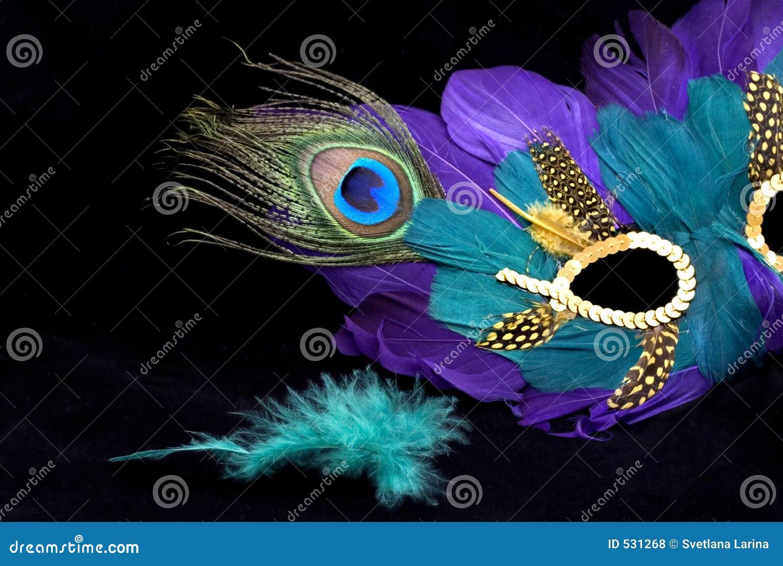 Download 羽毛gras绿色mardi屏蔽 库存照片. 图片 包括有 羽毛, 投反对票, 迷信, 化妆舞会, 屏蔽, 节日 - 531268