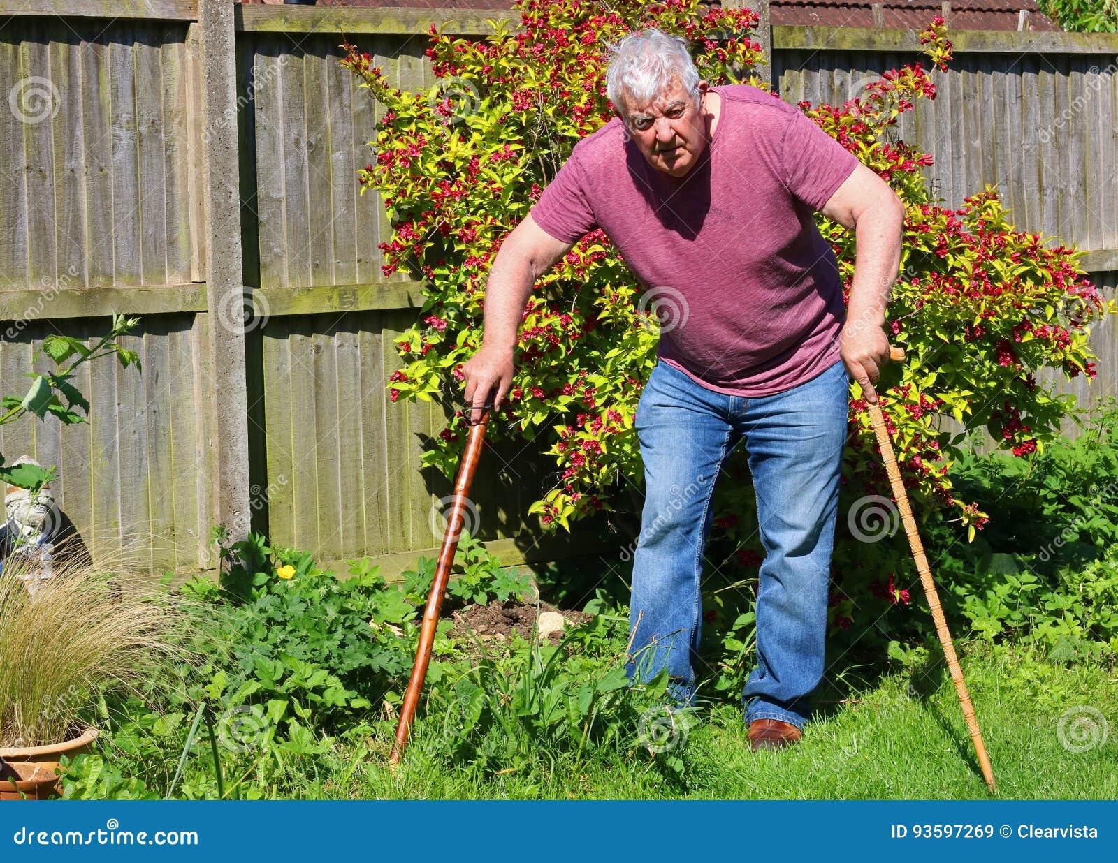老人拐杖或藤茎 关节x线照片