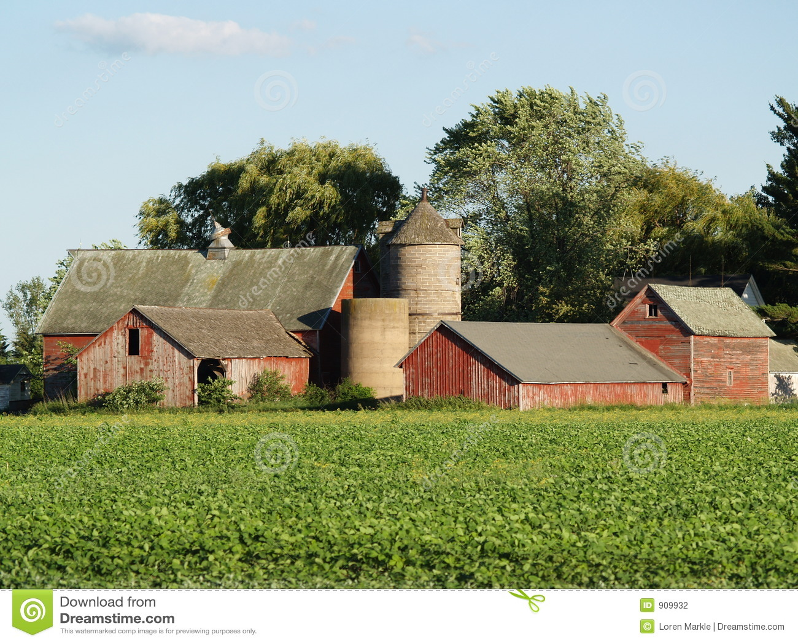 老农厂房子