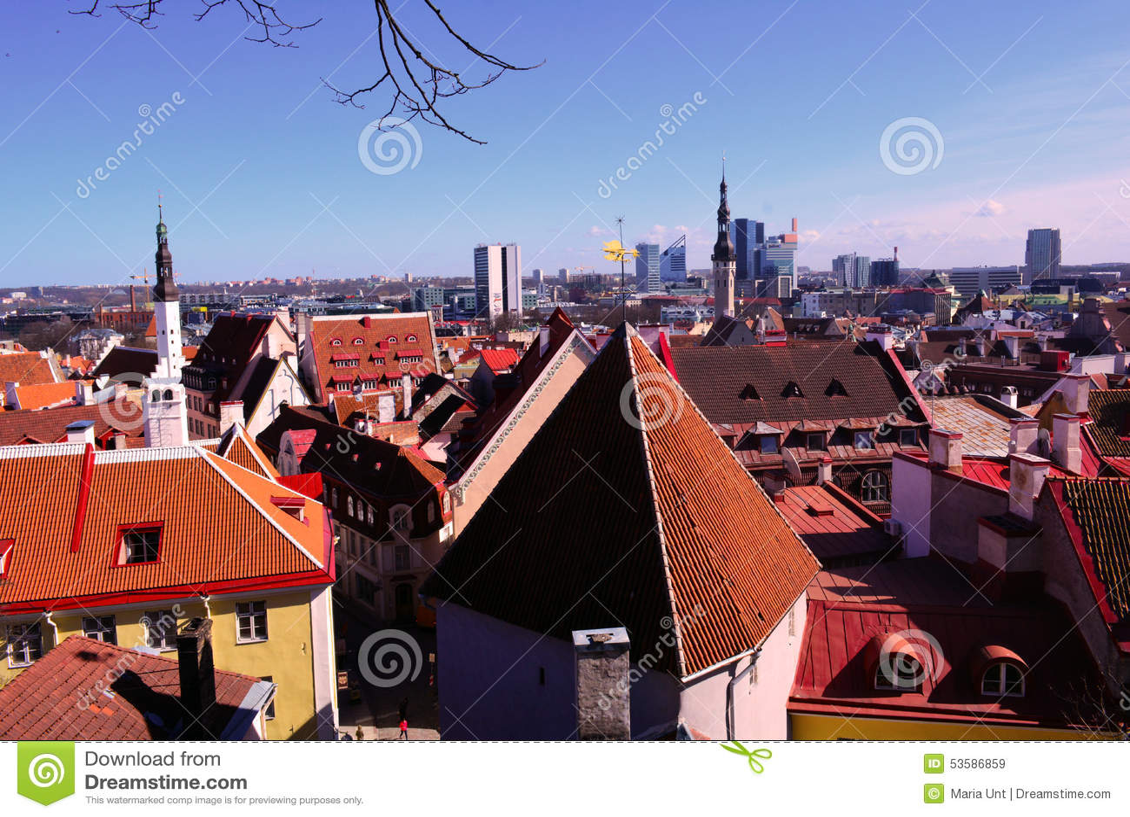 老塔林和它的老红色屋顶和一个新的城市,全景,爱沙尼亚