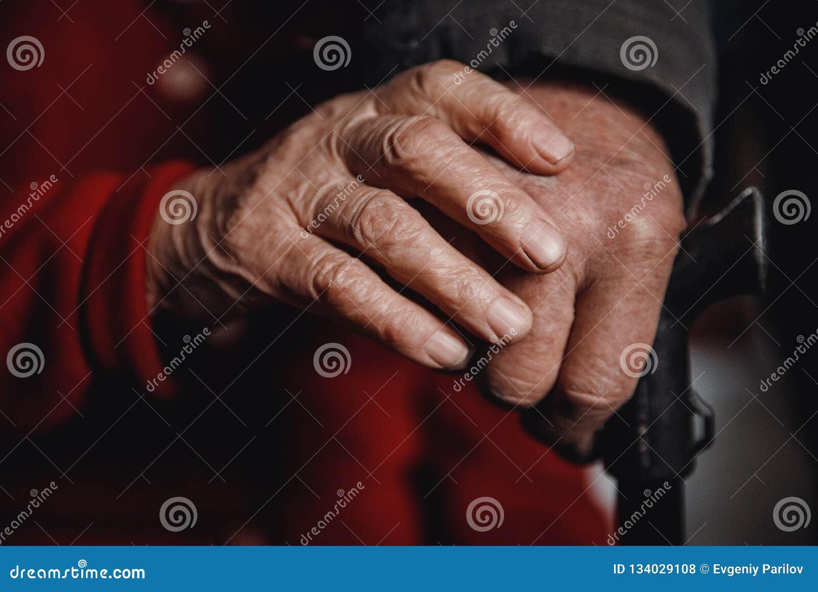 老妇人和人藏品藤茎,起皱纹的皮肤的手