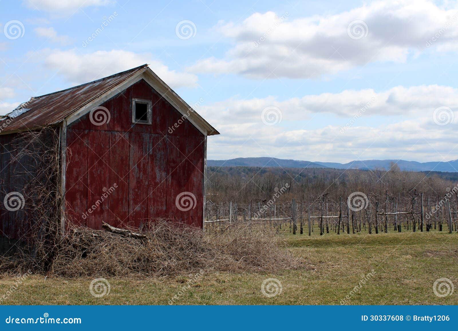 老红色谷仓俯视的苹果树