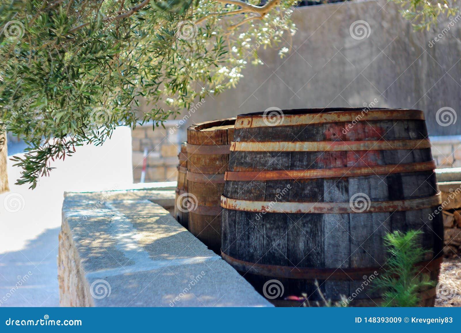 老葡萄酒桶当围场装饰