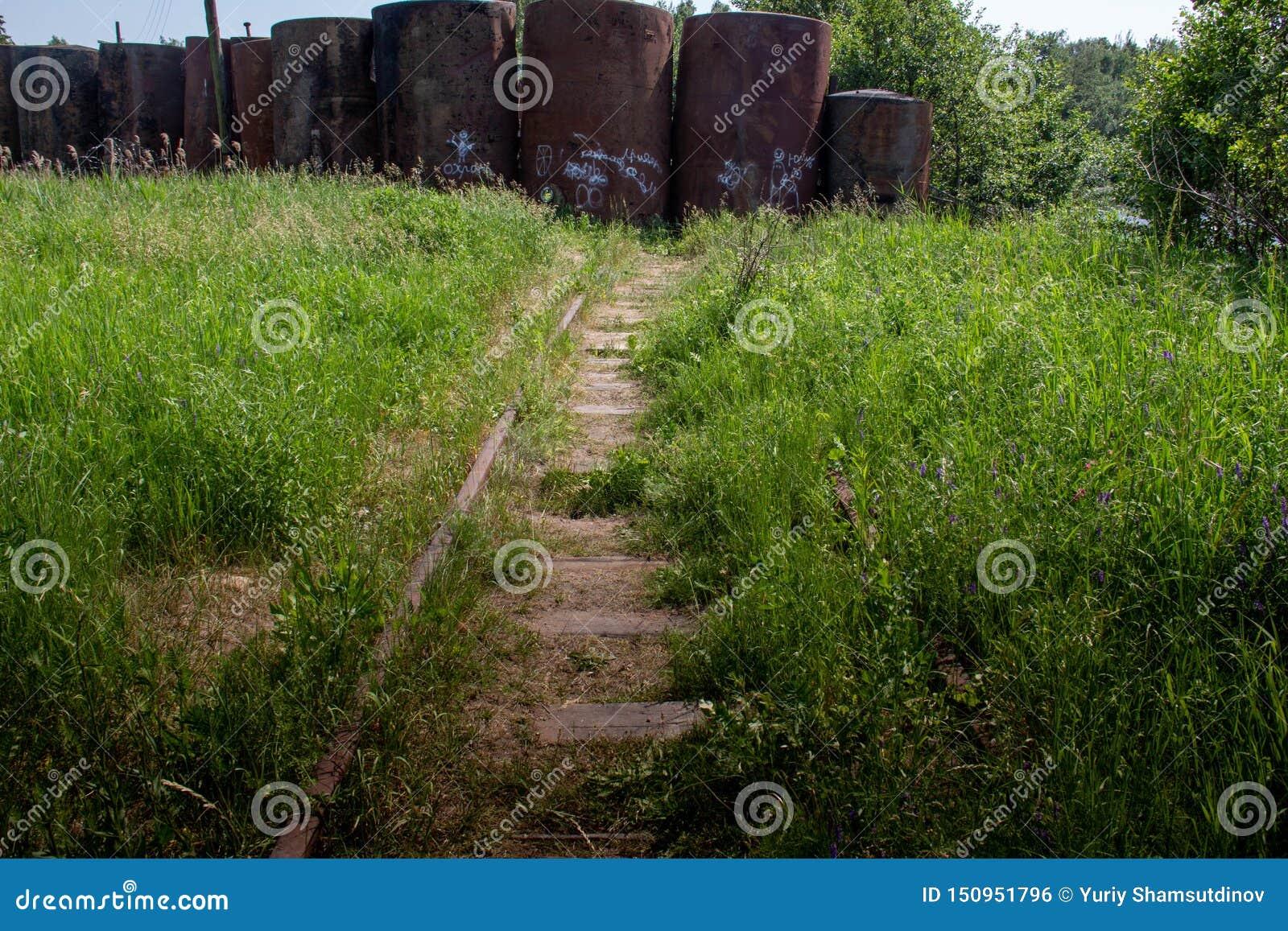 老铁路长满与草