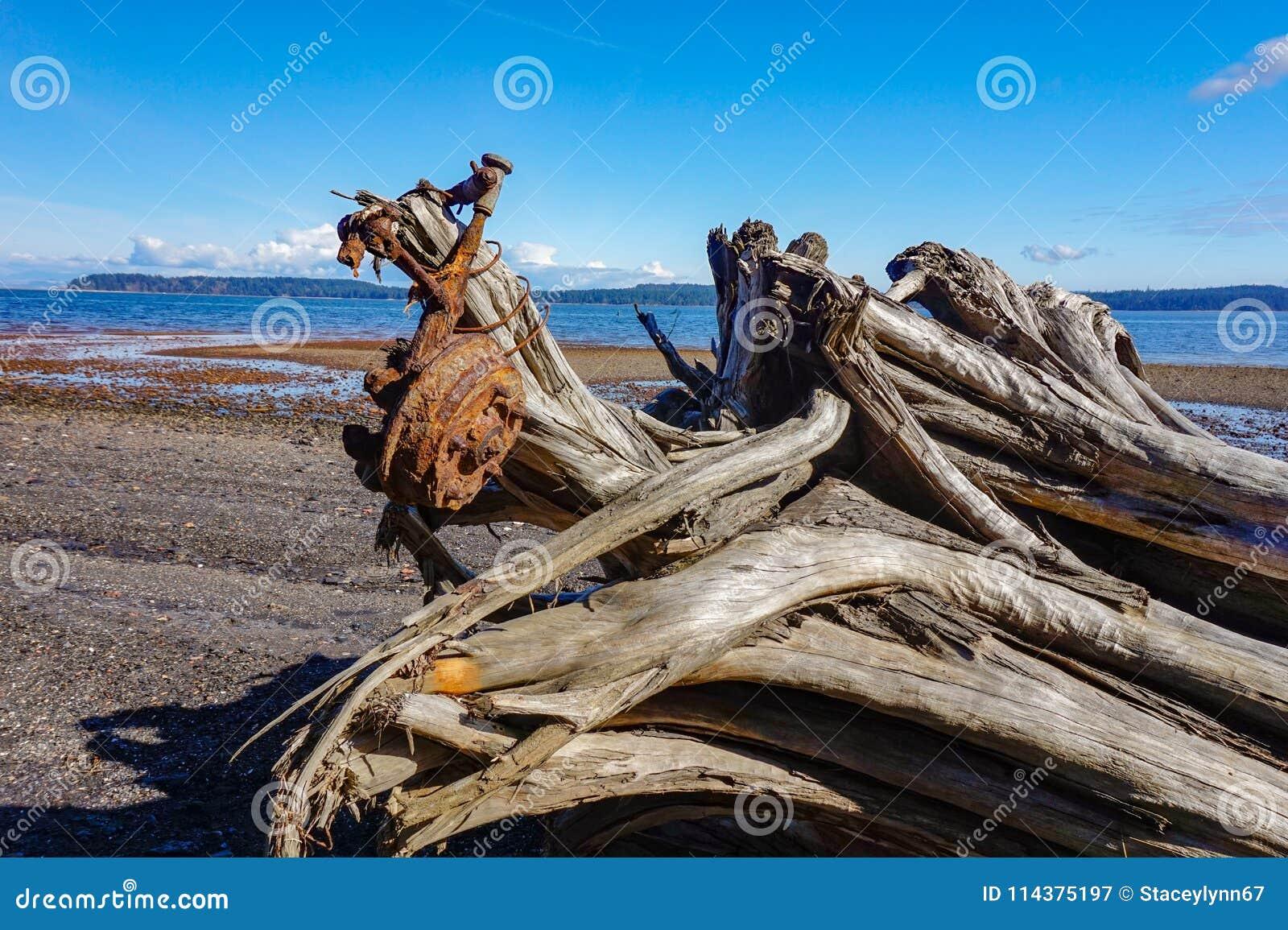 联合海湾煤炭小山温哥华岛,不列颠哥伦比亚省, Canad