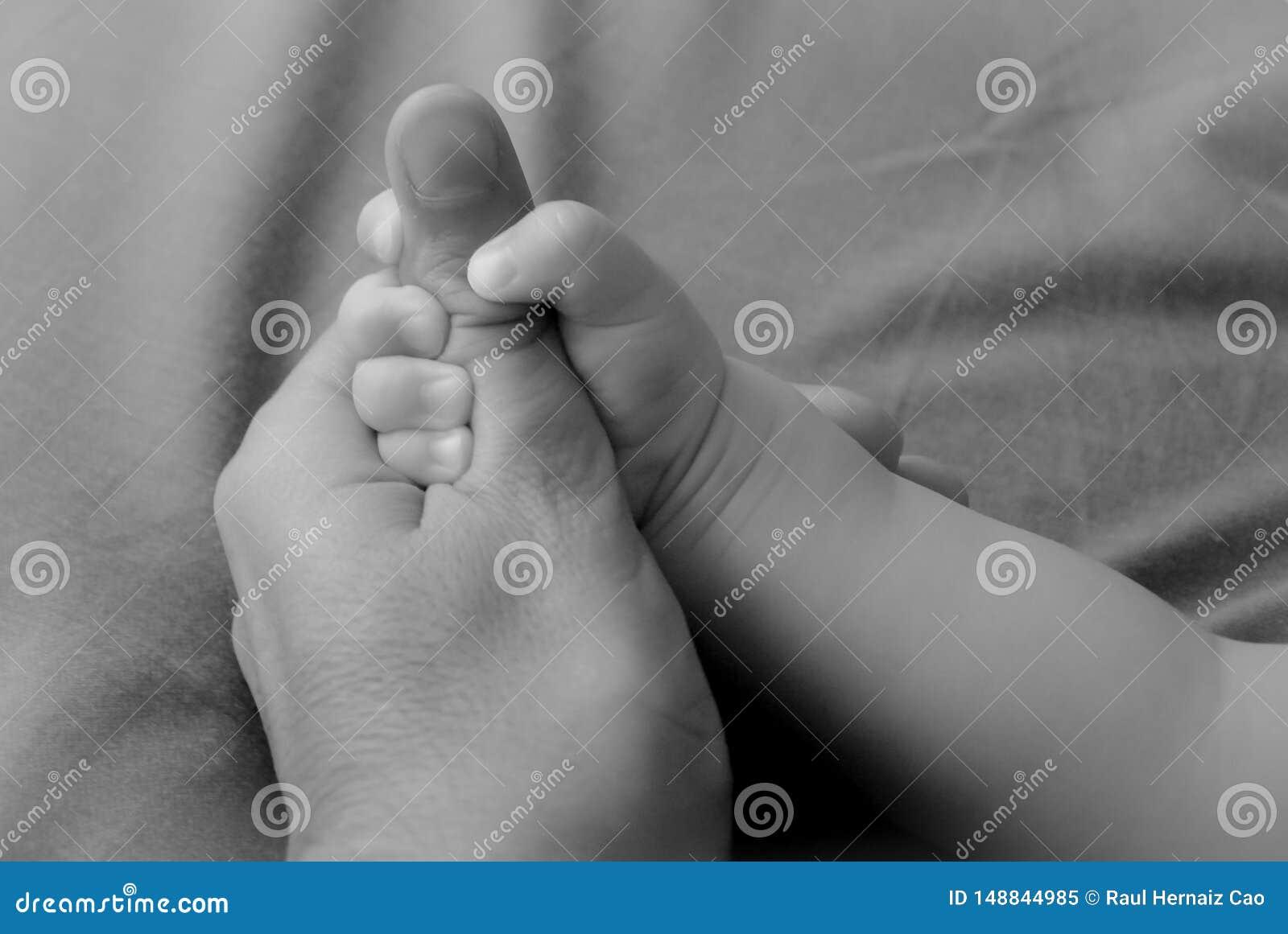 联合的标志在父亲和儿子之间的 孩子握父亲的拇指用他的手