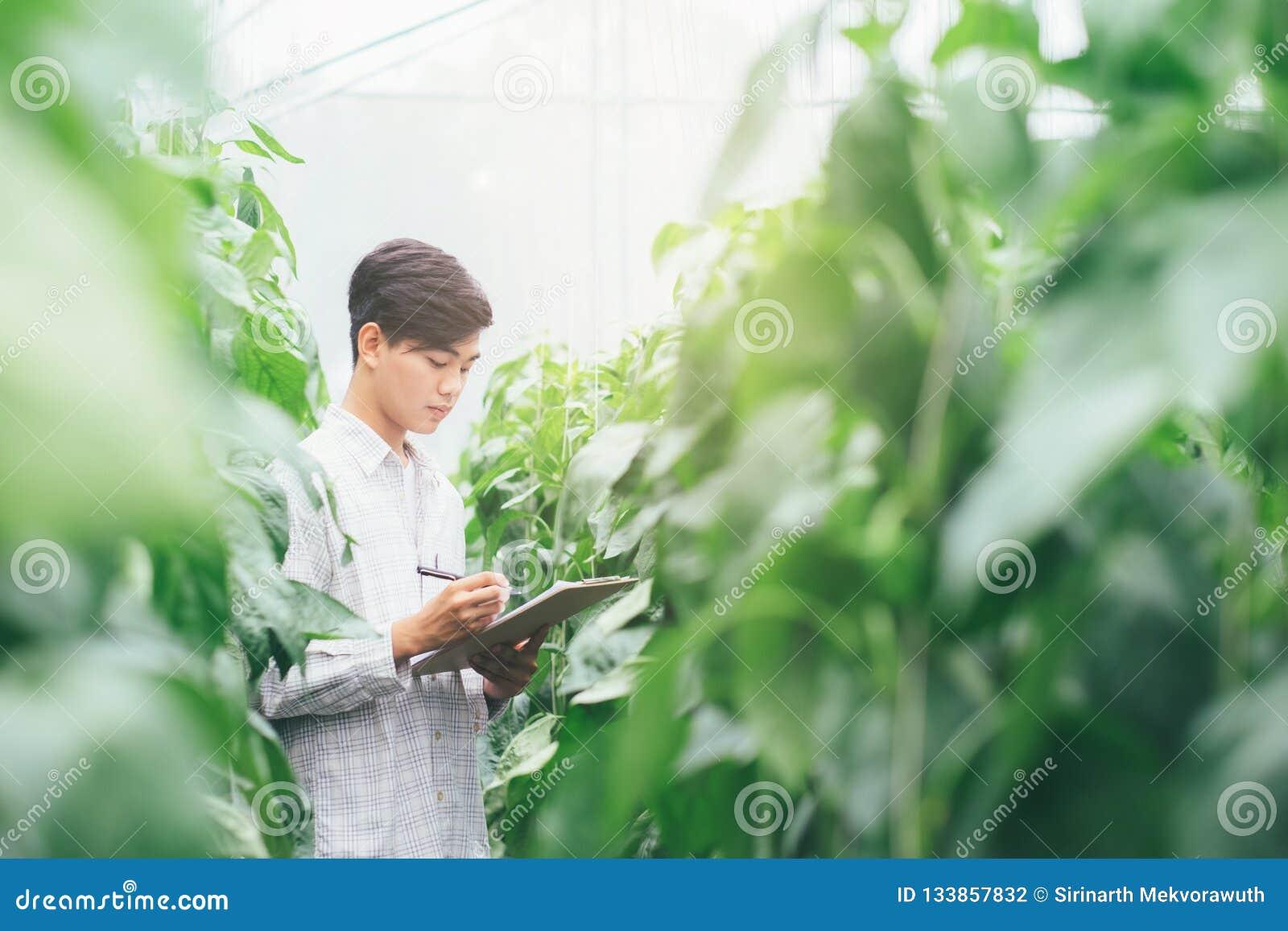聪明种田使用在农业的现代技术