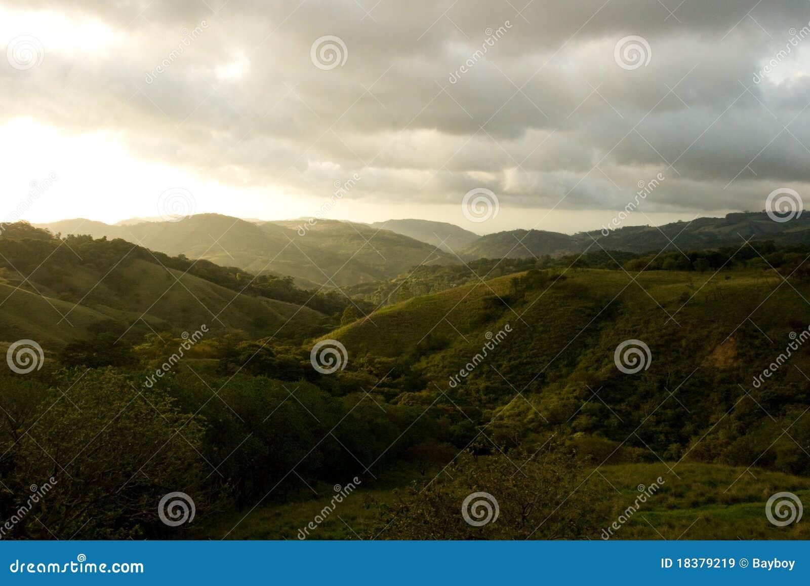 肋前缘monteverde rica