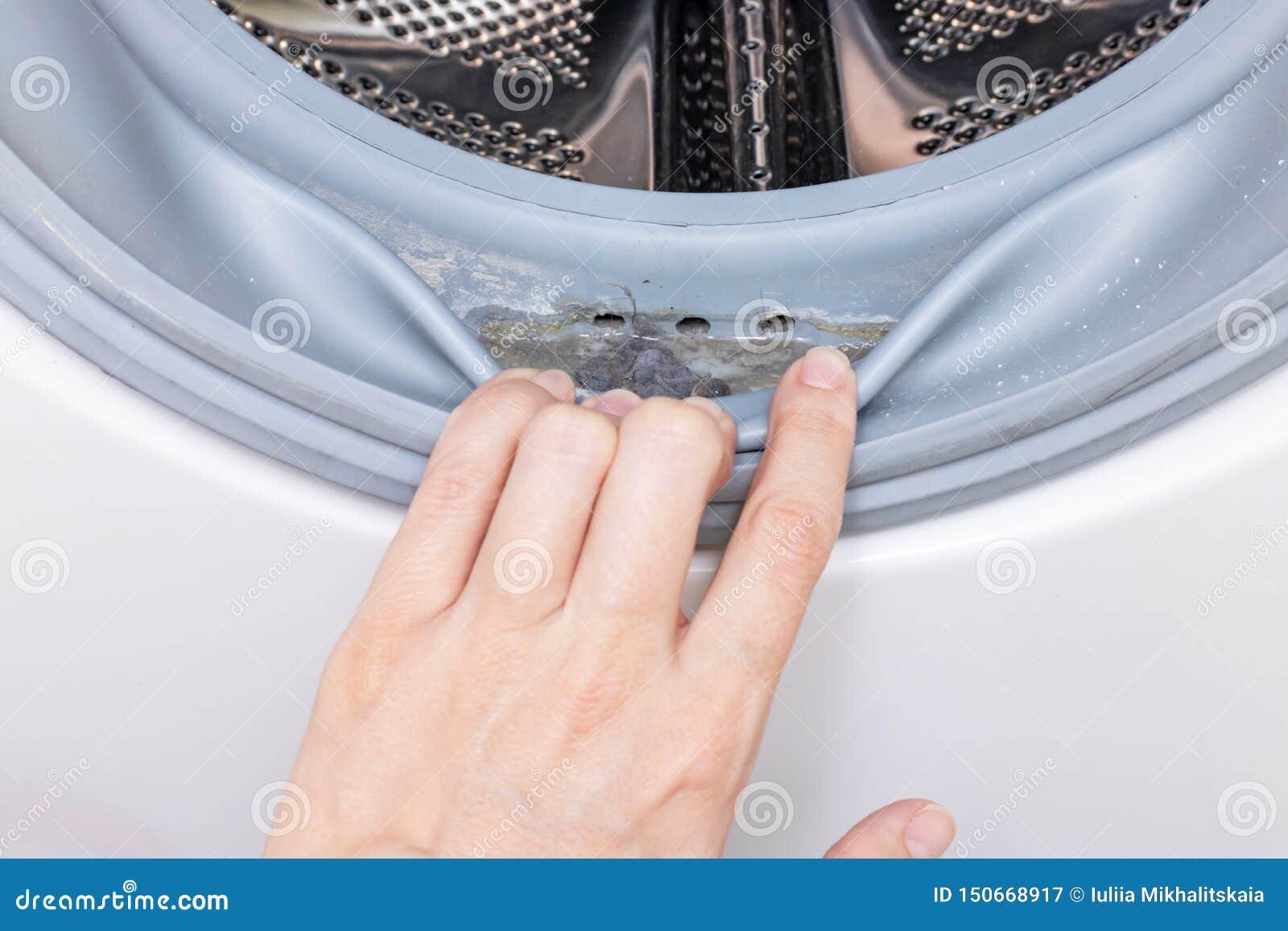 肮脏的发霉的洗衣机封胶和鼓关闭 模子、土和limescale在洗衣机 家用电器