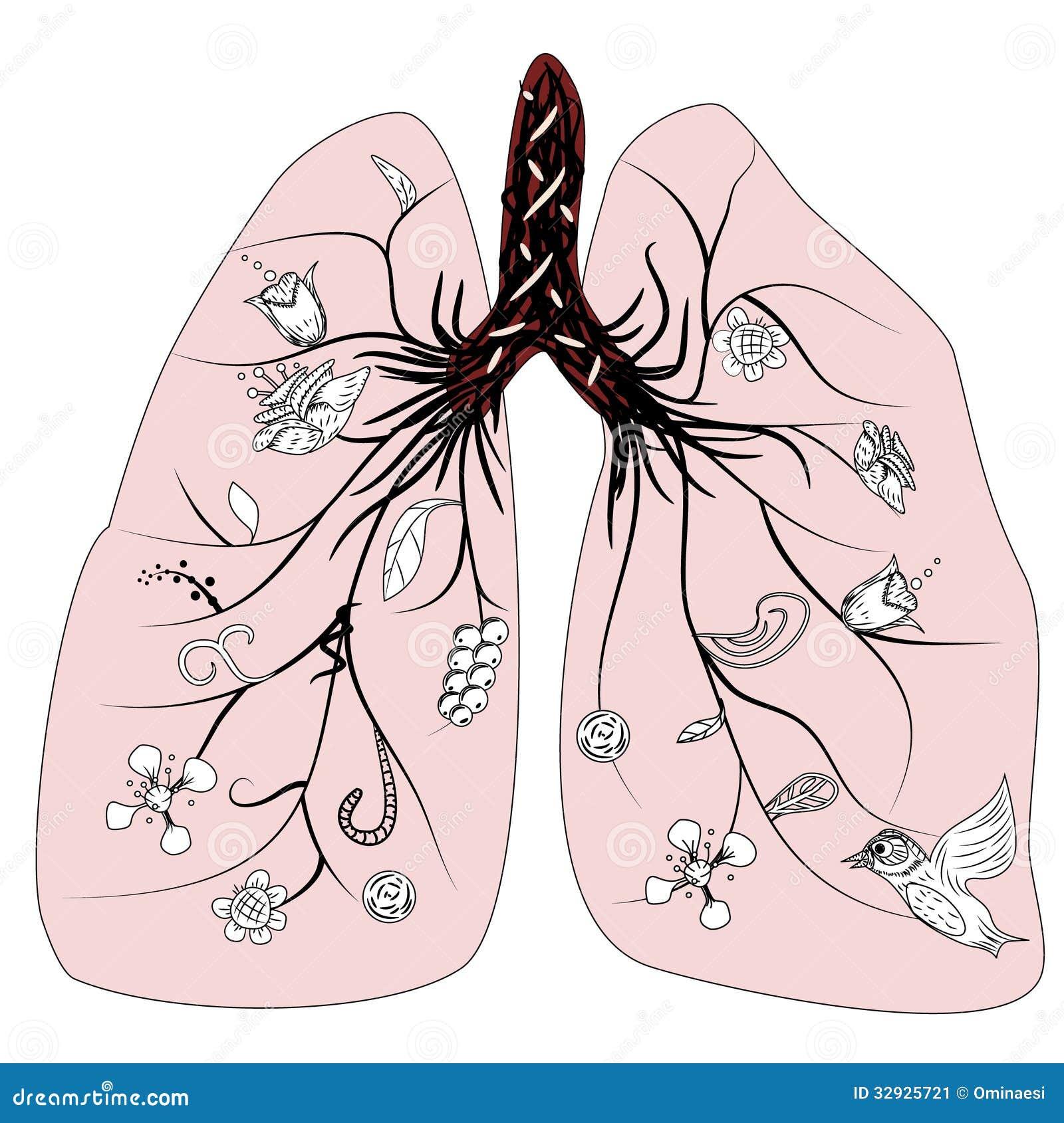 肺健康传染媒介图片