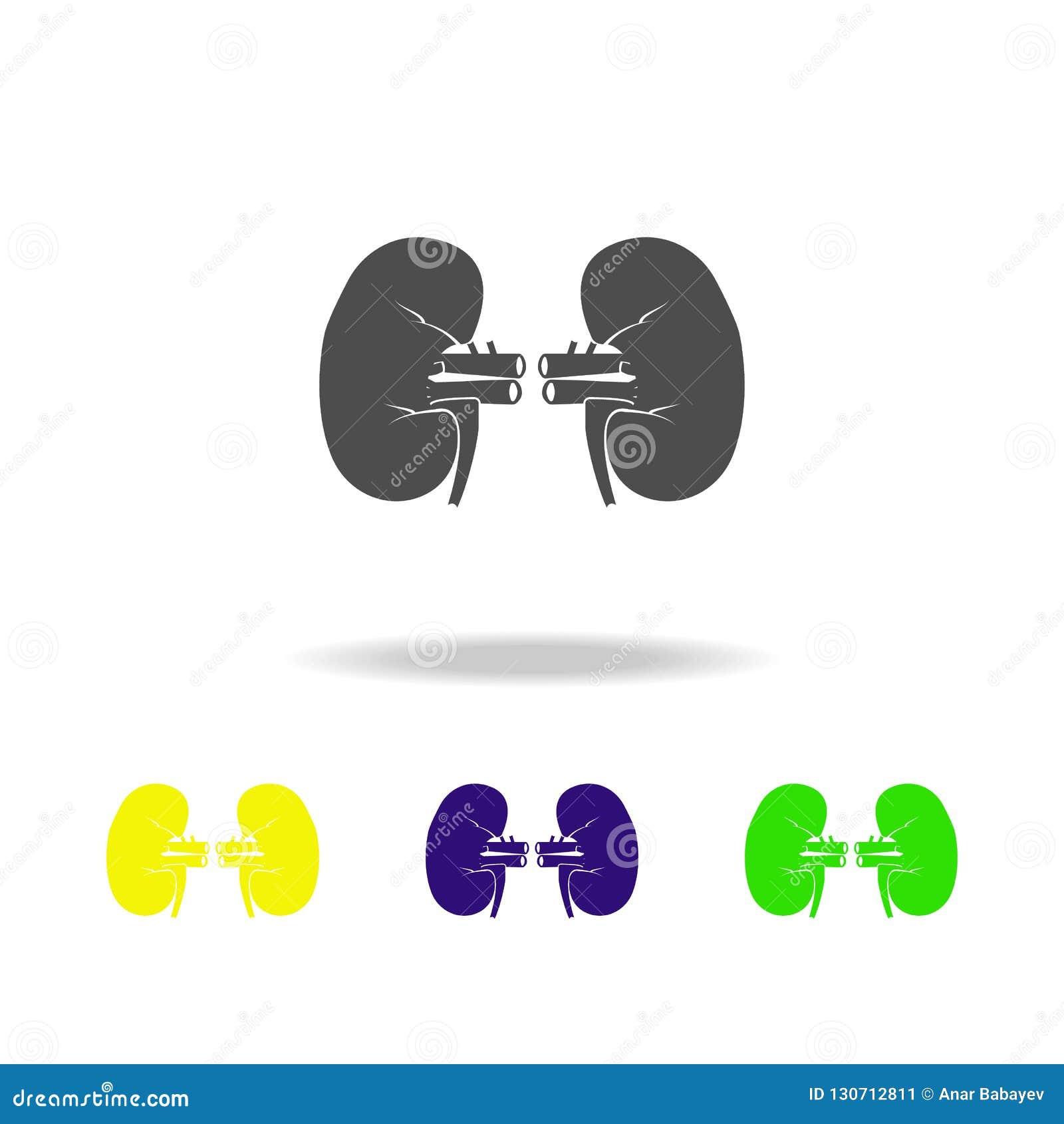 肾脏器官多彩多姿的象 身体局部多彩多姿的象的元素 标志和标志汇集象网站的,网de
