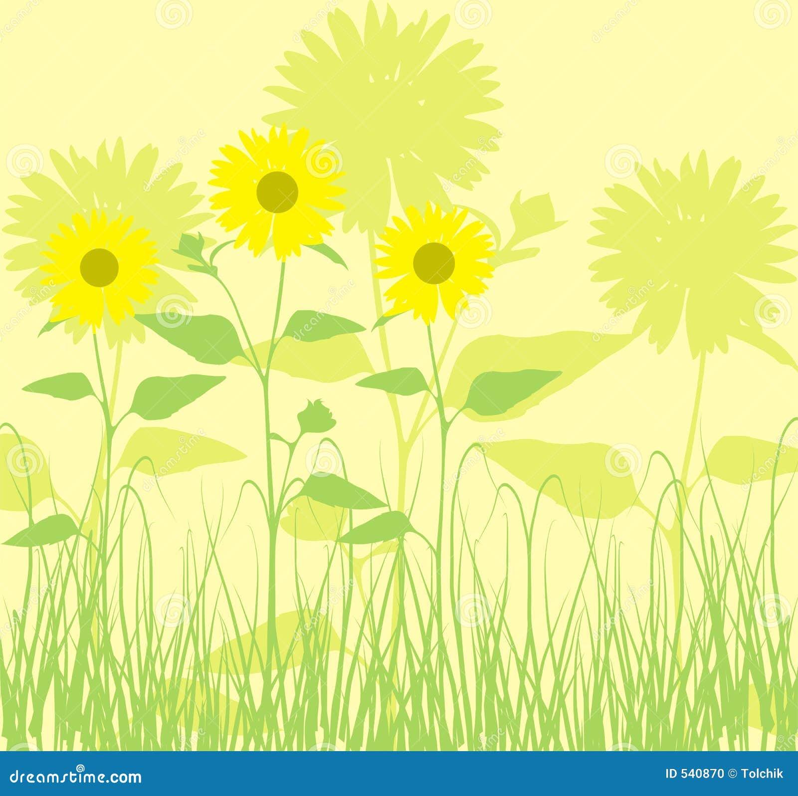 Download 背景向日葵向量 向量例证. 插画 包括有 例证, 减速火箭, 滚动, 反气旋, 要素, 螺旋, 框架, 春天 - 540870