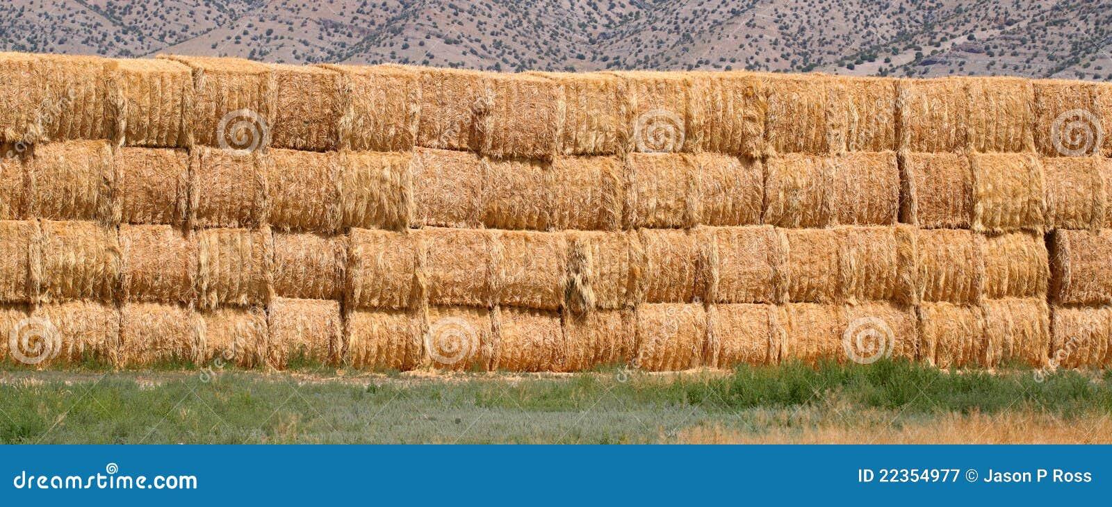 背景大包干草