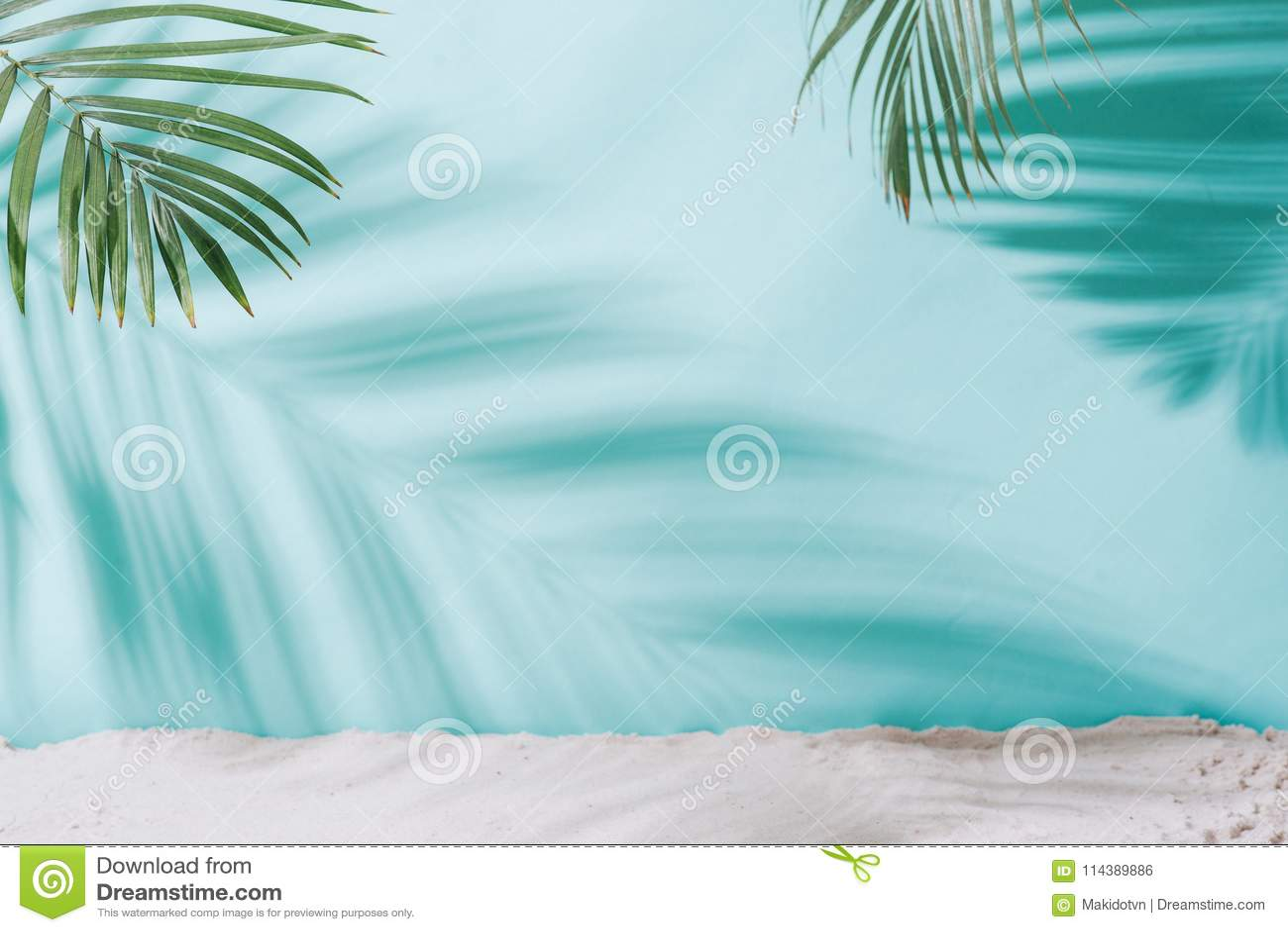 背景概念框架沙子贝壳夏天 在蓝色背景的棕榈树阴影