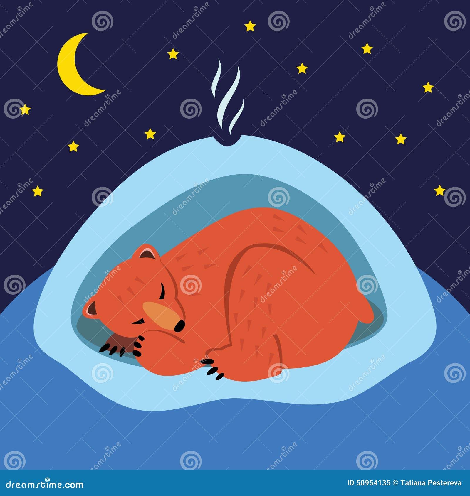背景熊休眠白色