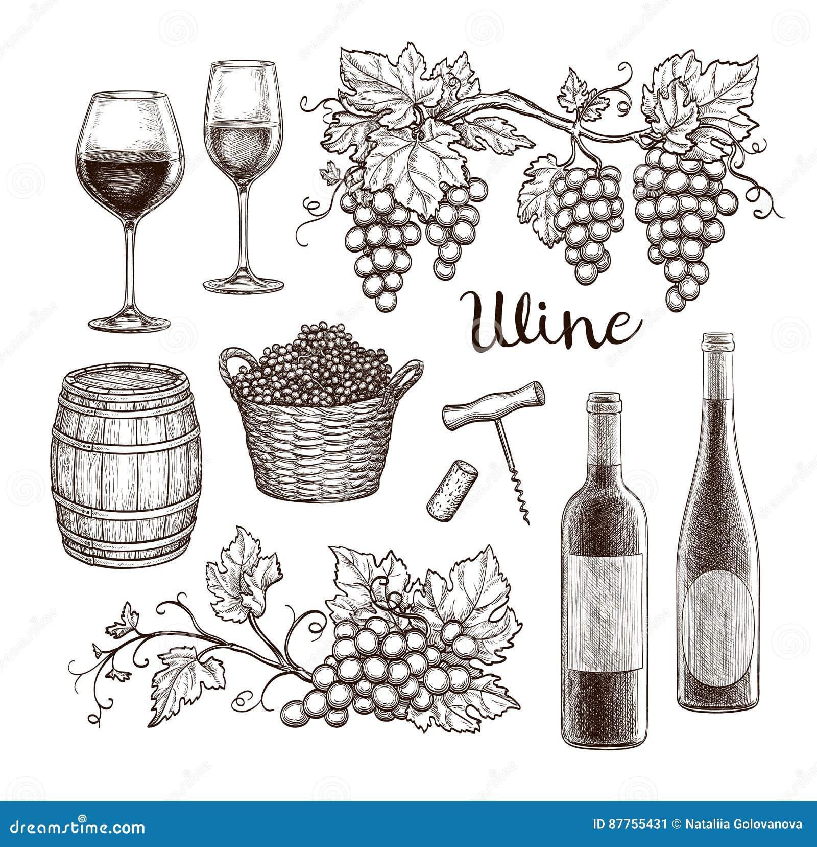 背景瓶典雅的玻璃查出红色集合白葡萄酒