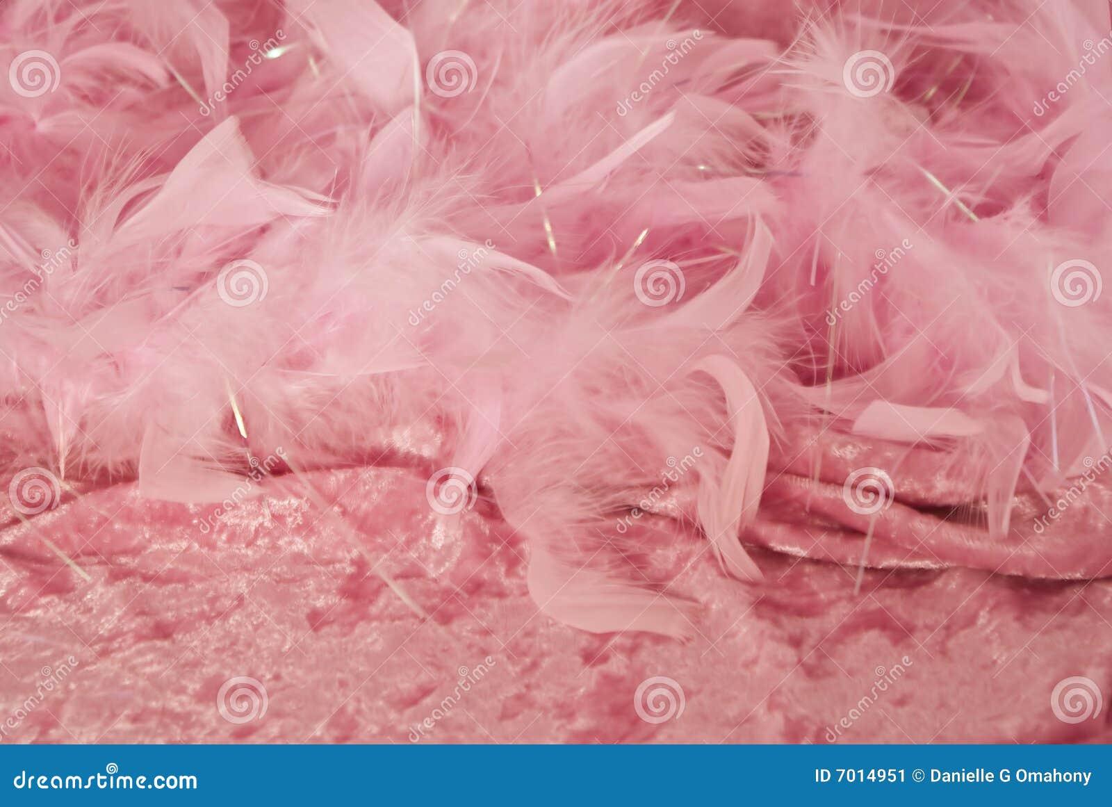 爱色堂性爱色�_背景击碎了羽毛女性爱粉红色公主主题华伦泰天鹅绒非常.