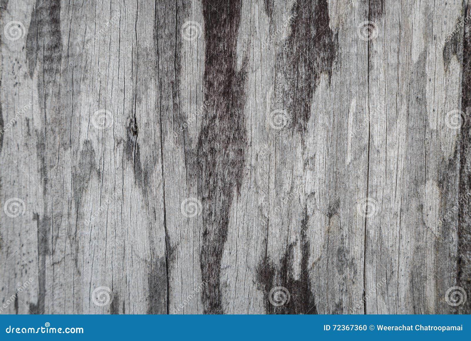 背景老木头