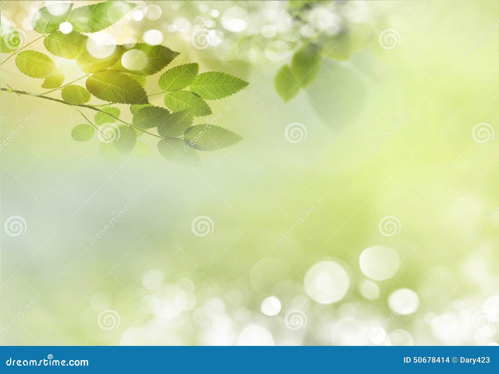 Download 背景蒲公英充分的草甸春天黄色 库存照片. 图片 包括有 下落, 生气勃勃, 春天, 健康, 增长, 孤立 - 50678414