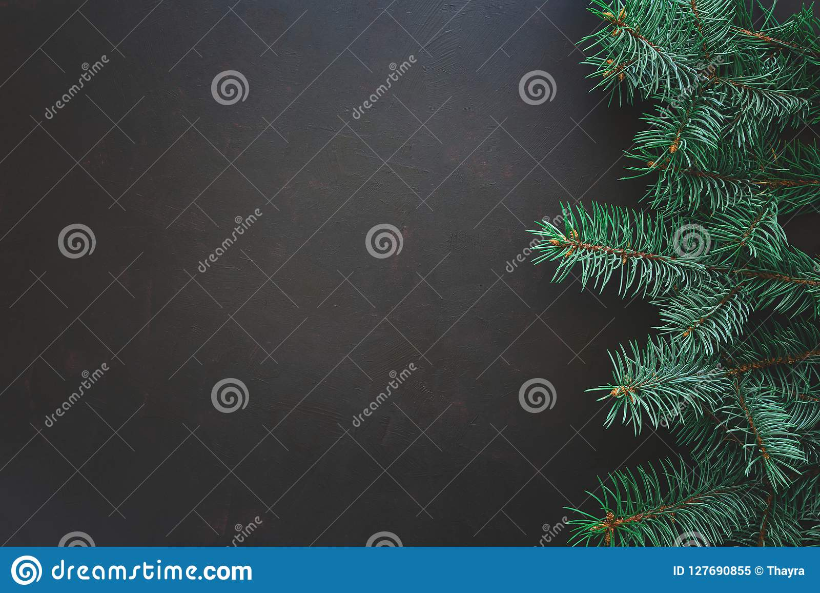 背景边界把空白圣诞节礼品金黄查出的丝带装箱 在黑暗的木背景的杉树分支 顶视图 复制空间
