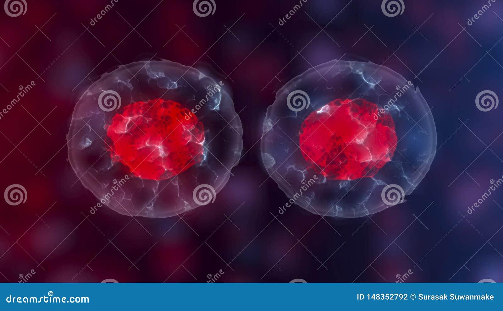 胚胎干细胞或成长、疾病,3D的修复和治疗例证