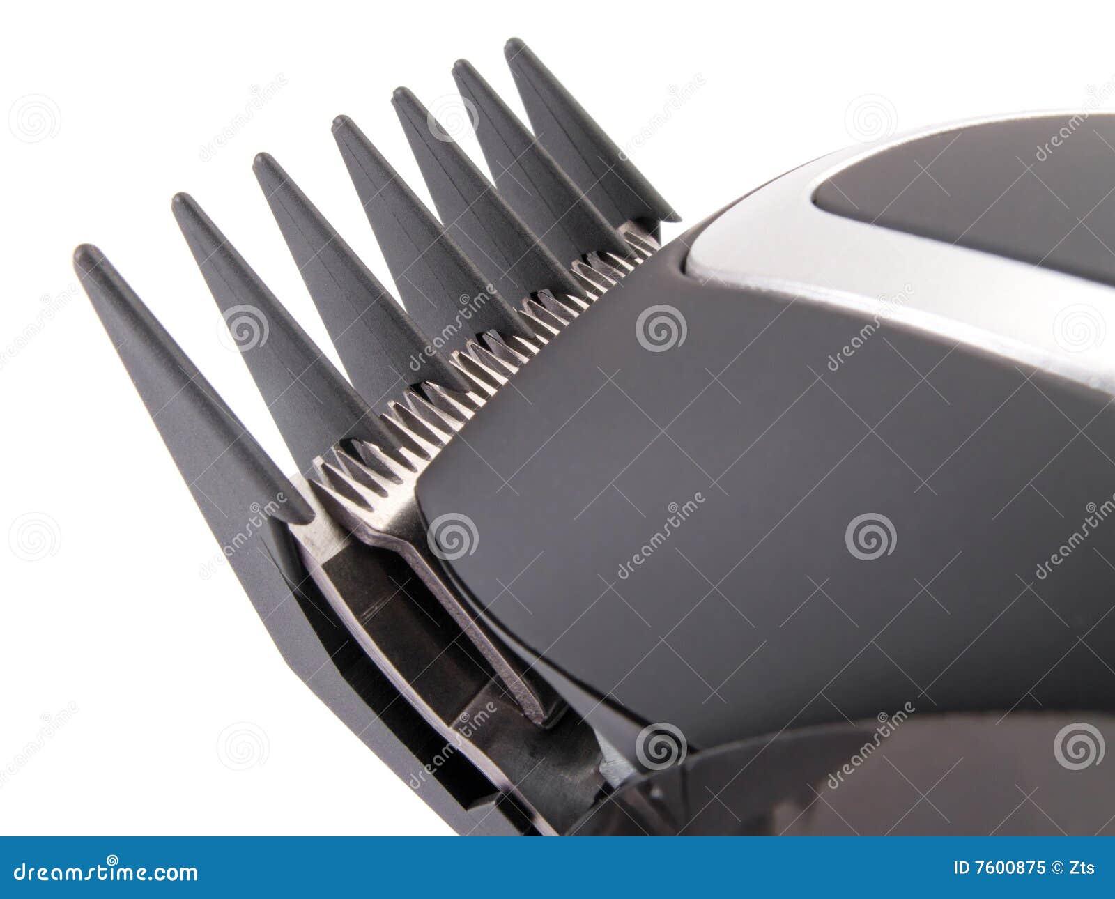 胡子电头发现代整理者