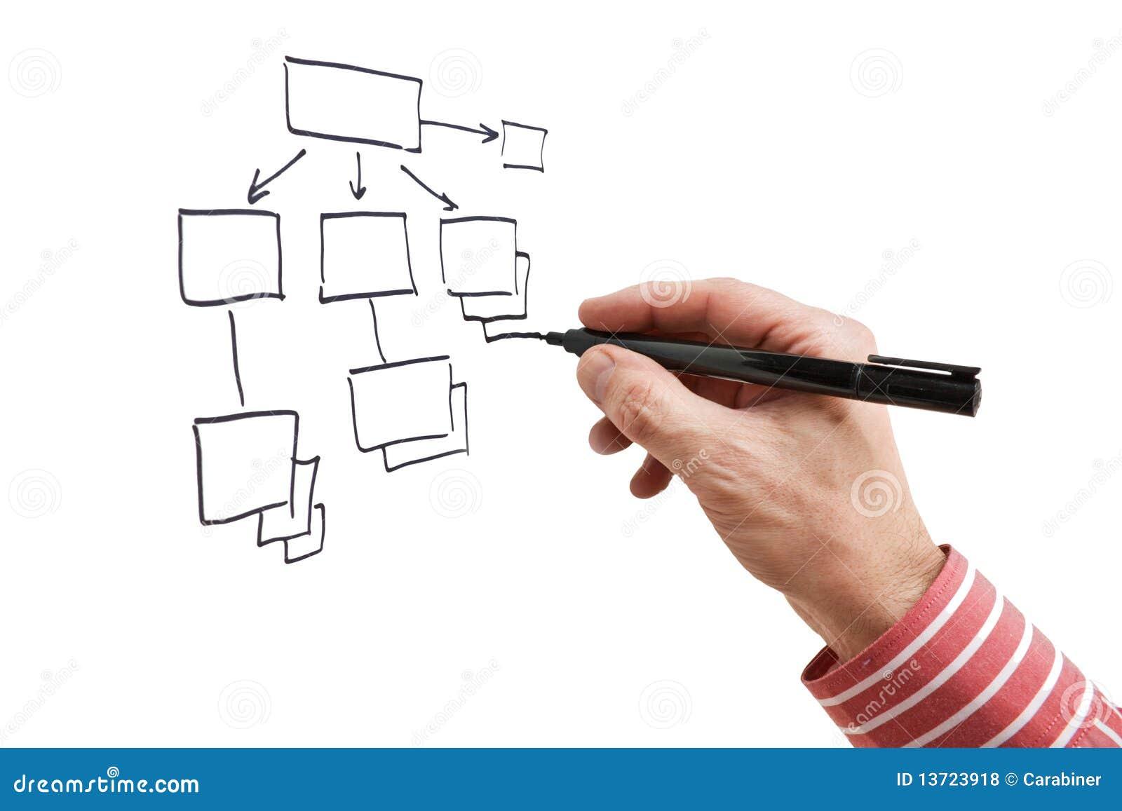 胳膊结构图画标记图片