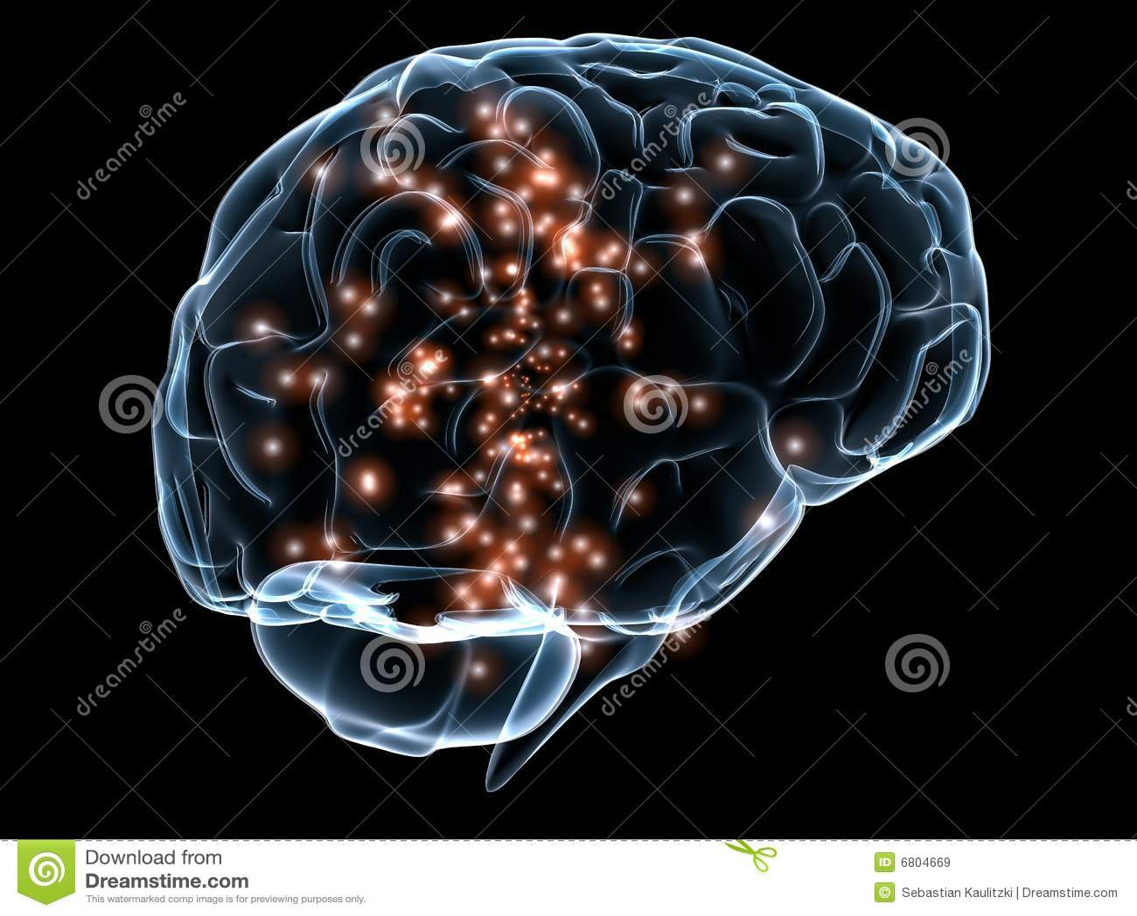 脑子人力透明
