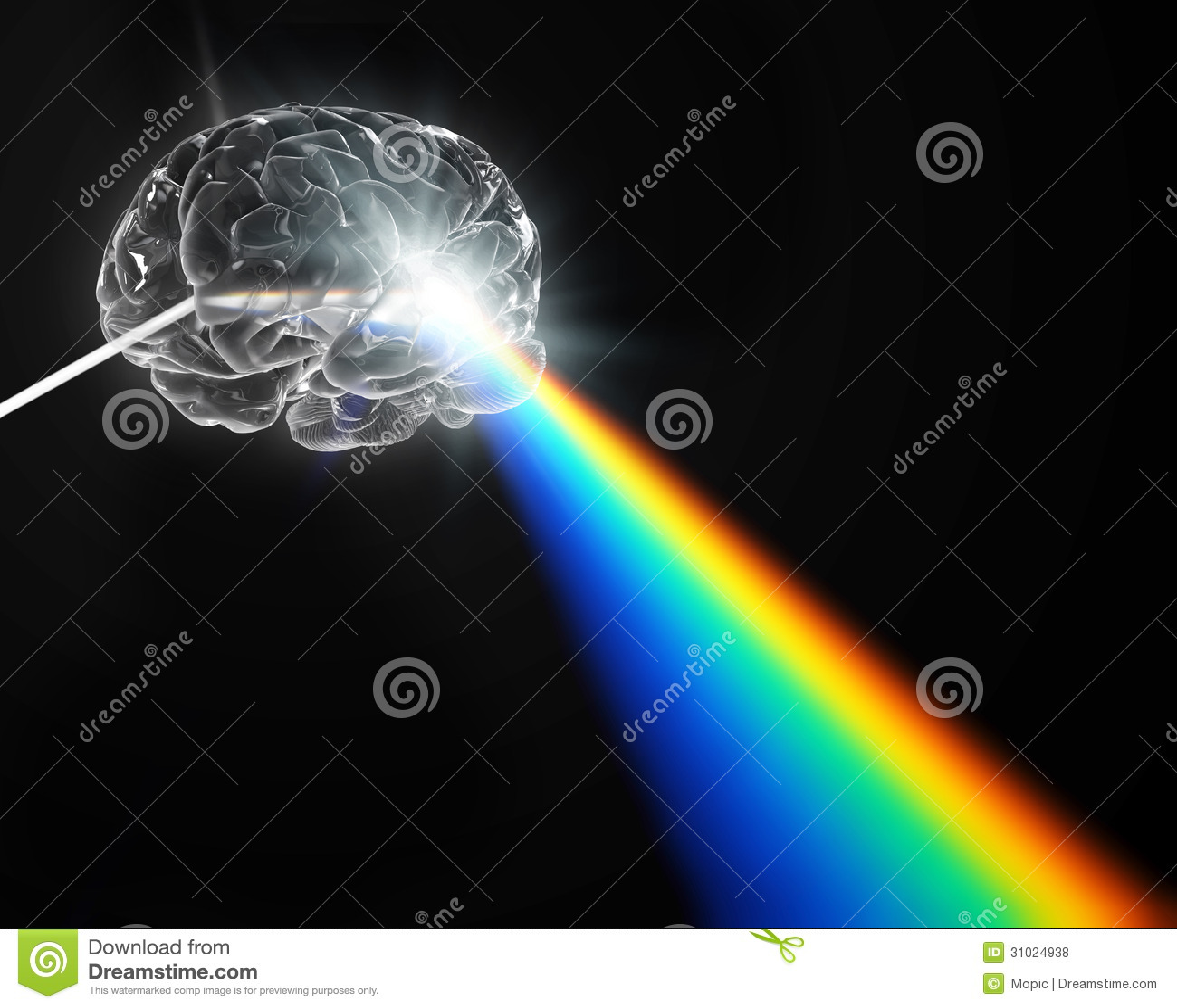 脑子形状的棱镜分散的白光