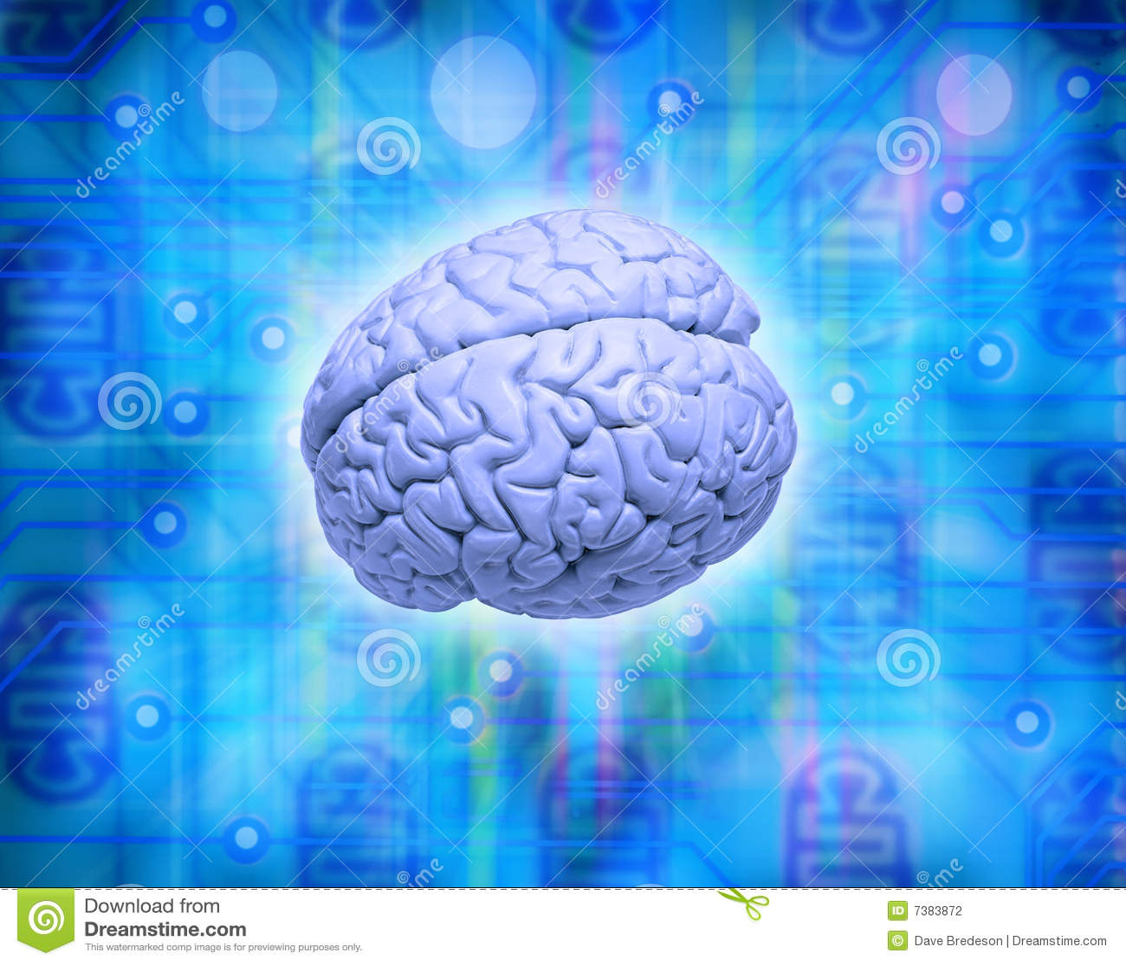 脑子计算机