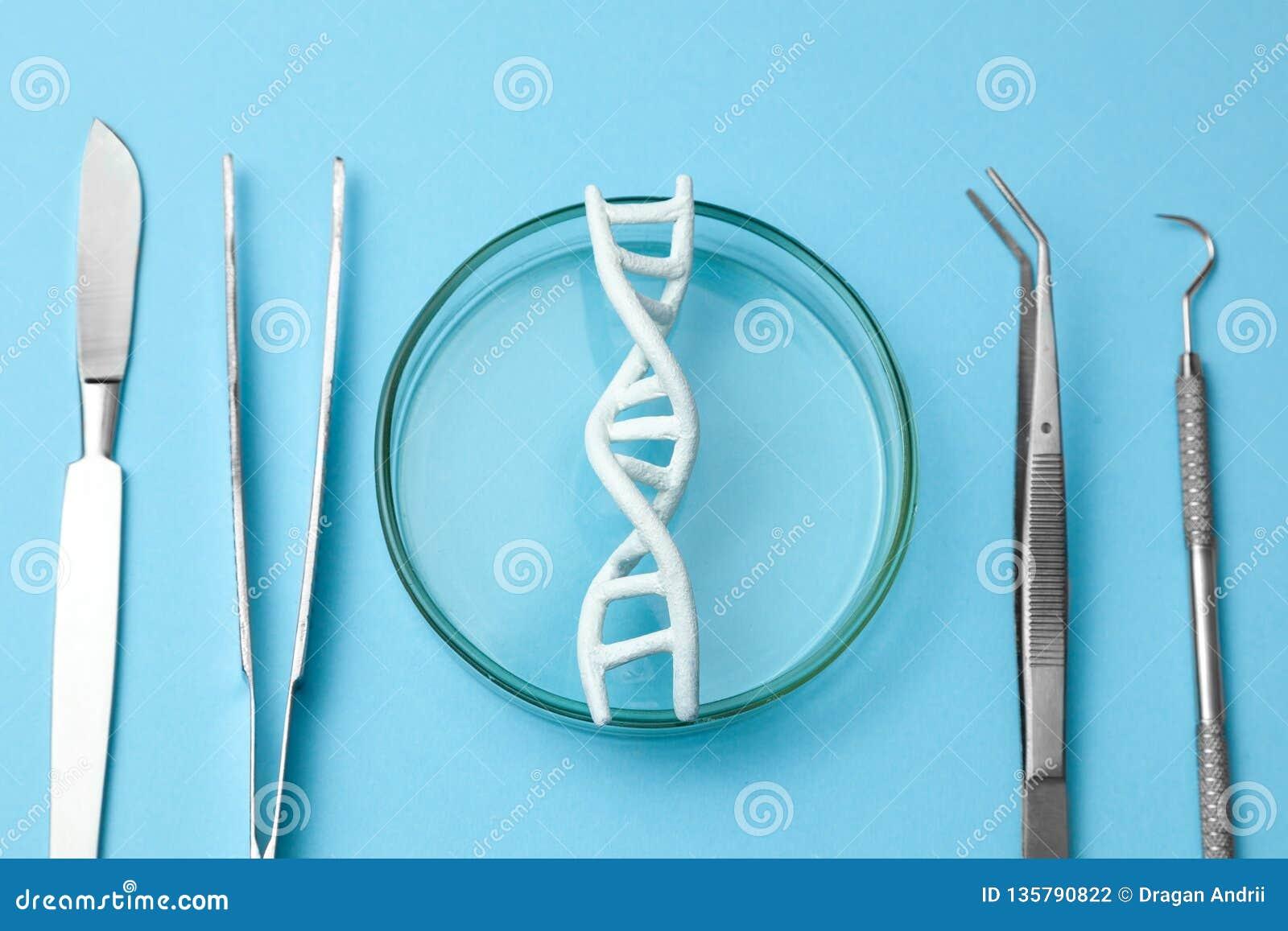 脱氧核糖核酸螺旋研究 基因实验的概念在人的生物代码脱氧核糖核酸的 医疗仪器解剖刀和镊子