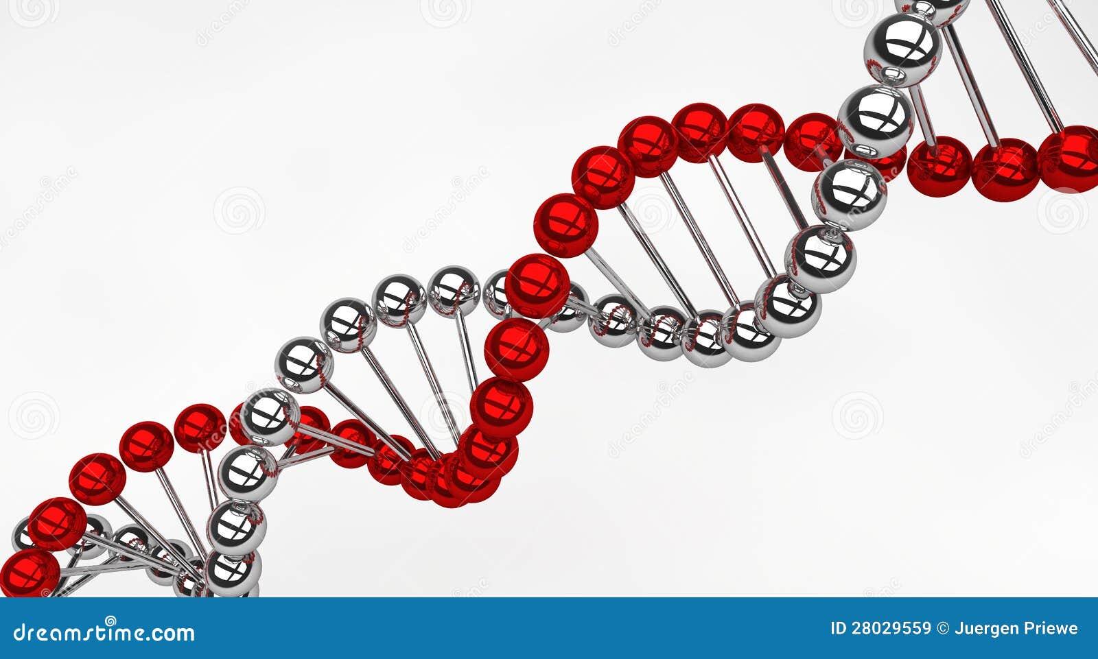 脱氧核糖核酸螺旋