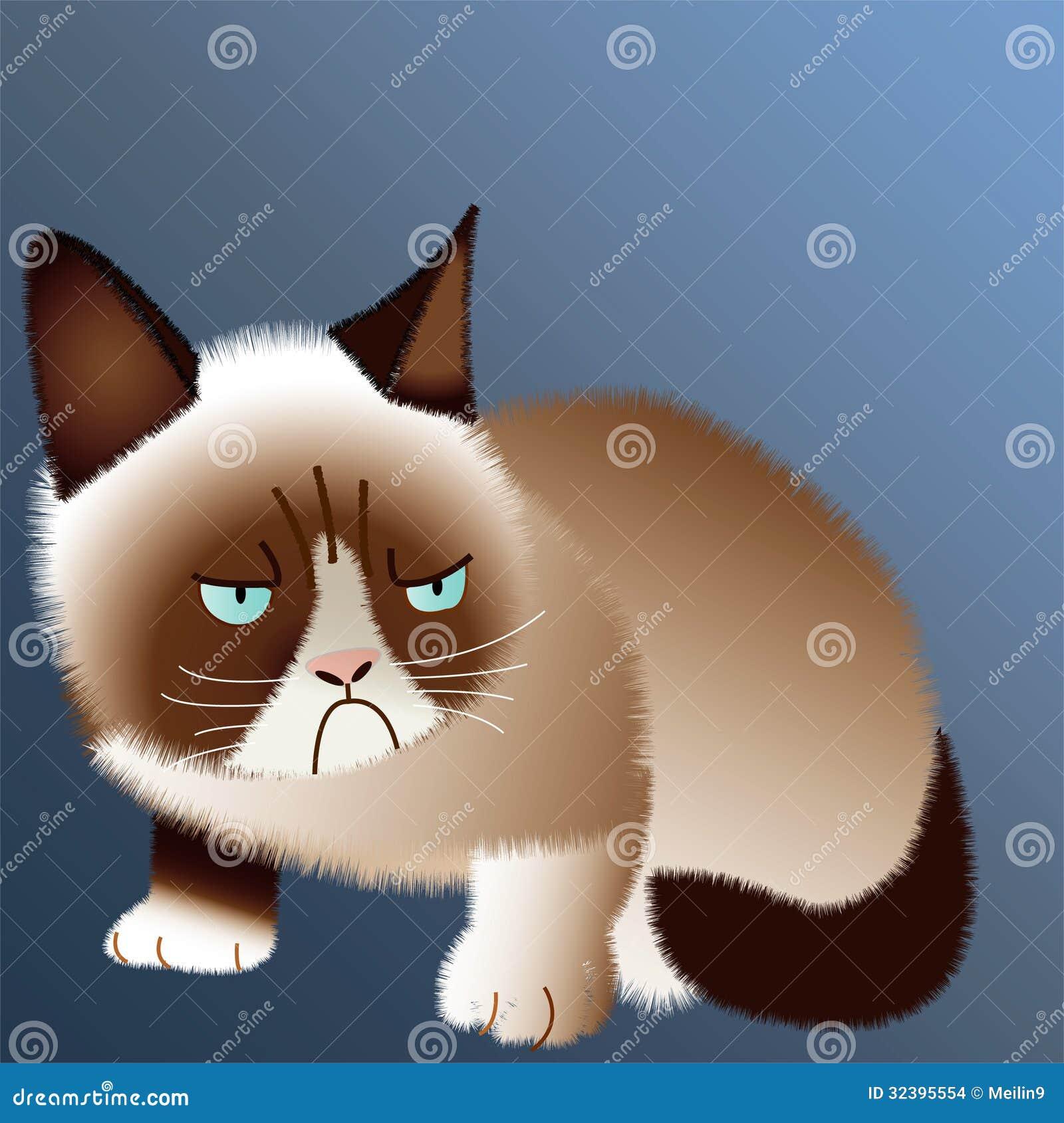 脾气坏的猫
