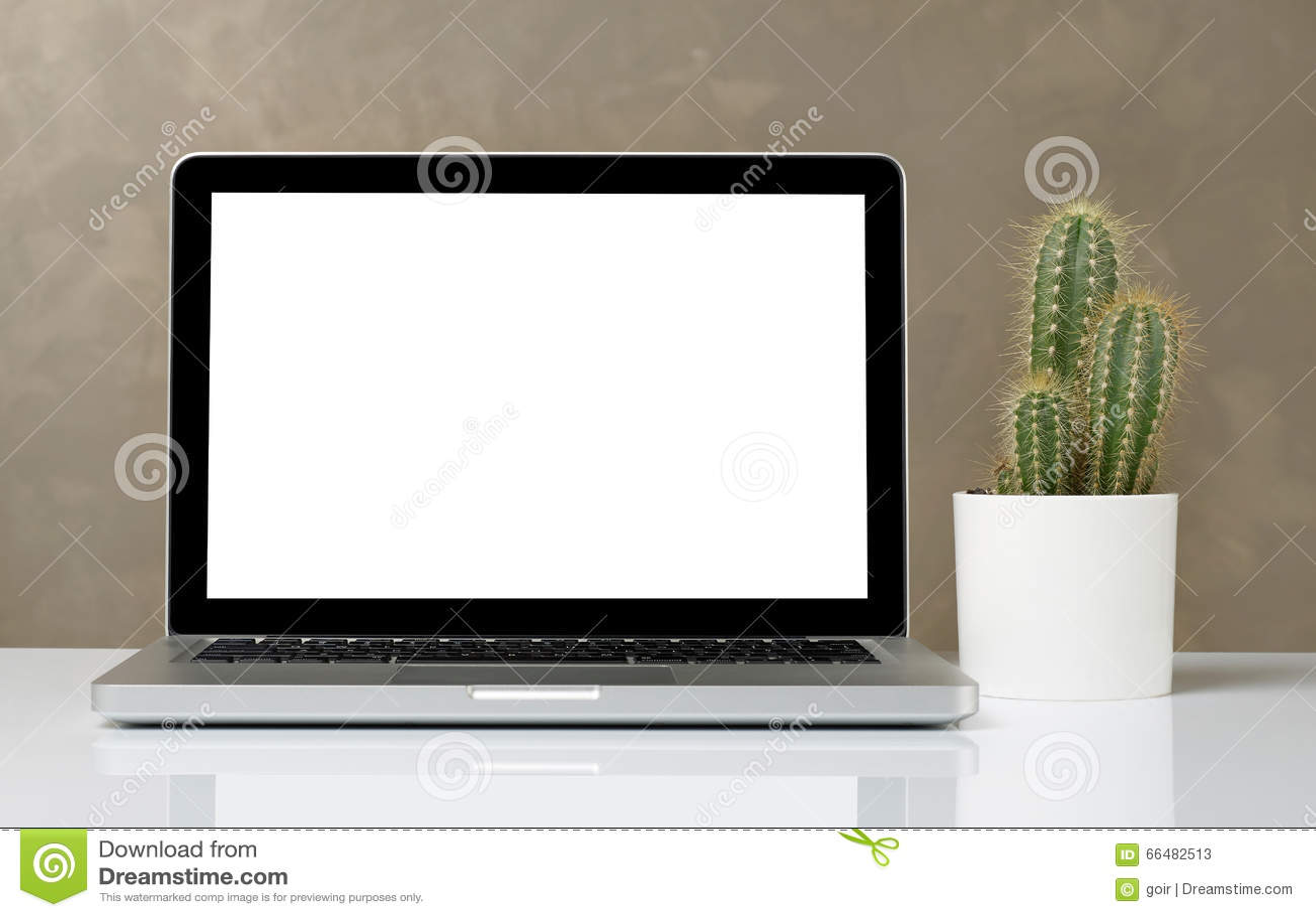 膝上型计算机和仙人掌