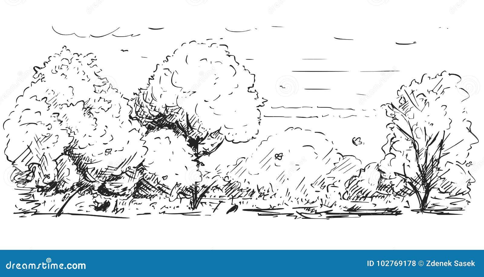自然公园风景概略图画