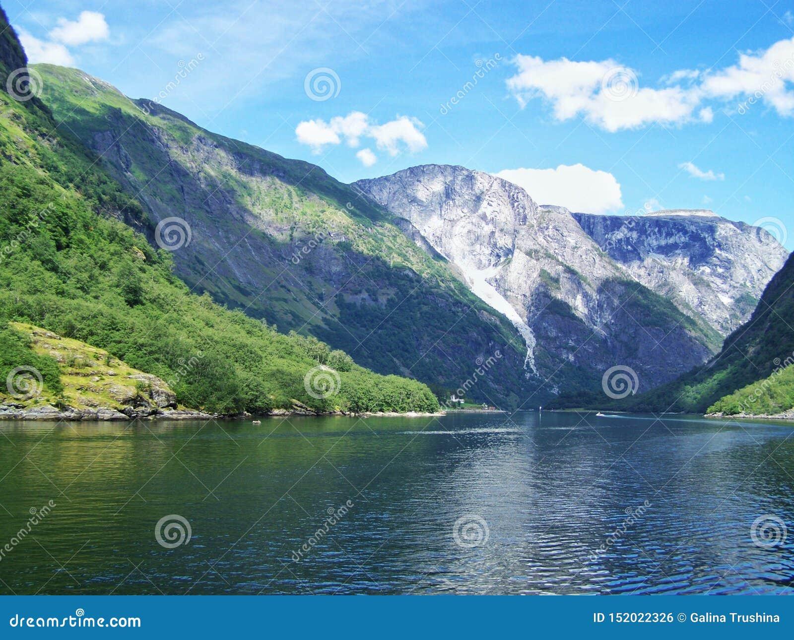 自然挪威夏天 水,森林海湾在一好日子