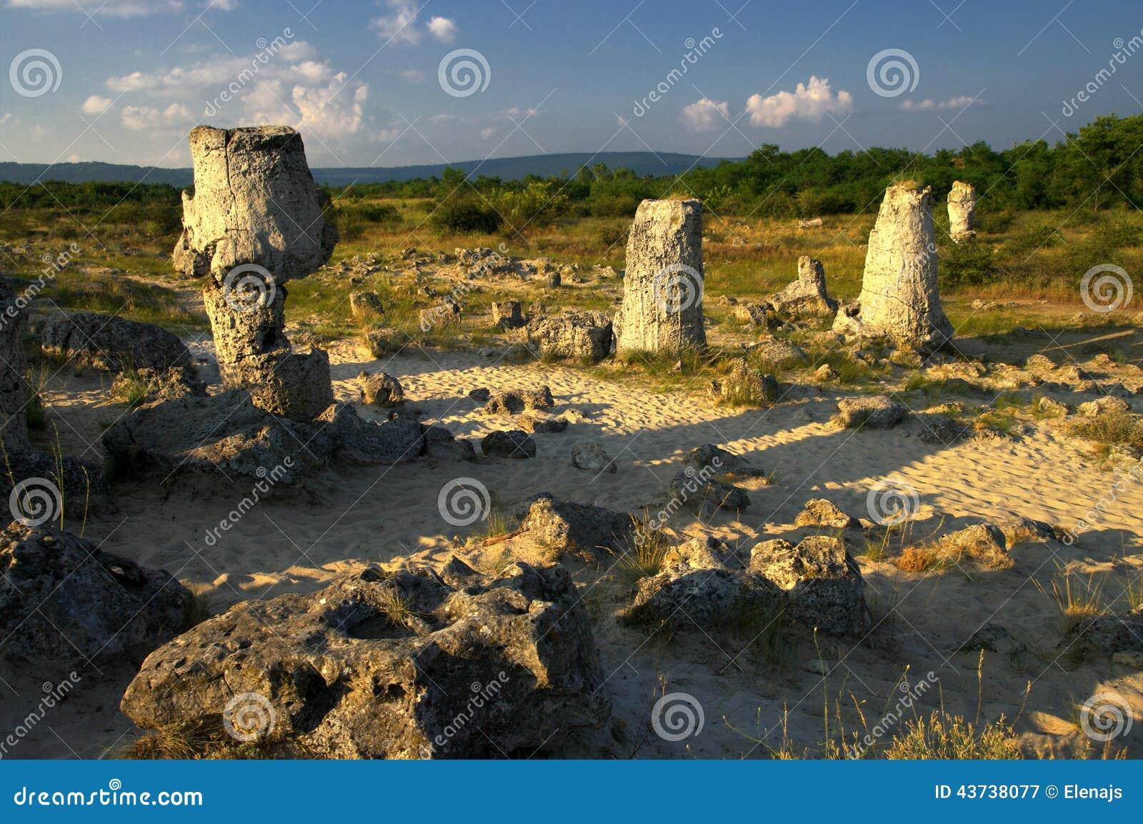 保加利亚/pobiti kamani/是地质奇迹,并且它是自然地标 石森林是从在5图片