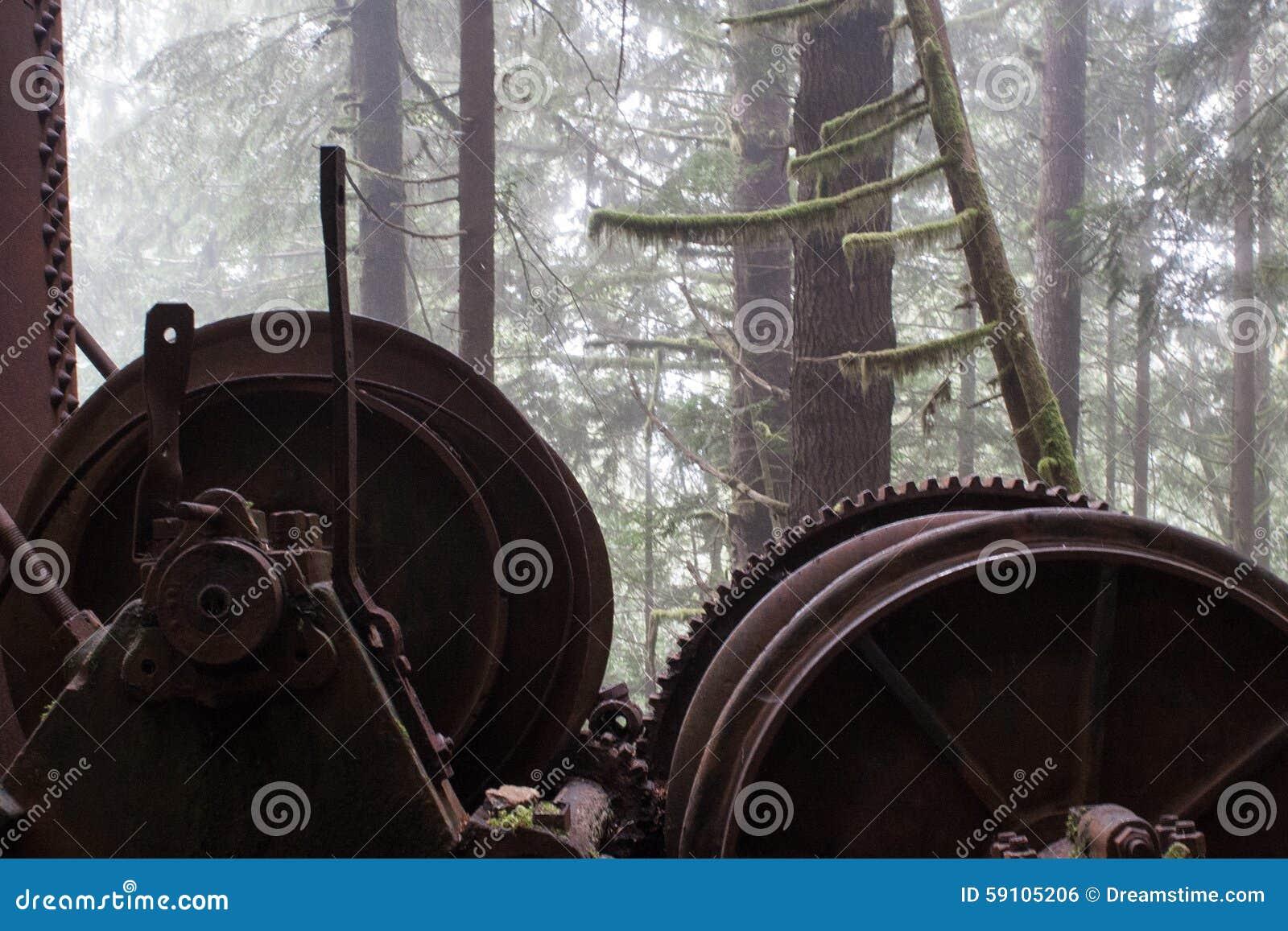 自然遇见机器