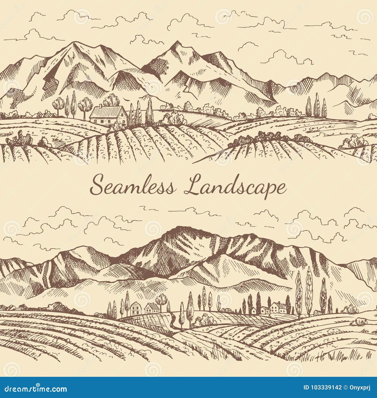 自然风景的无缝的图片 葡萄园或乡下例证