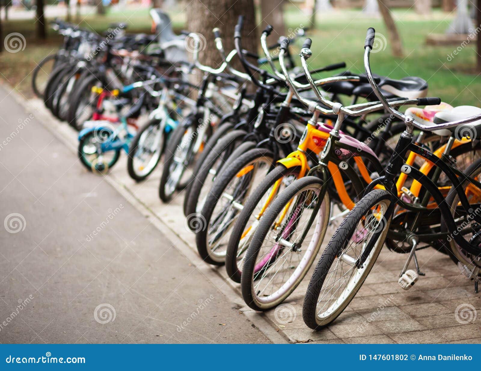 自行车停车处在一个公园