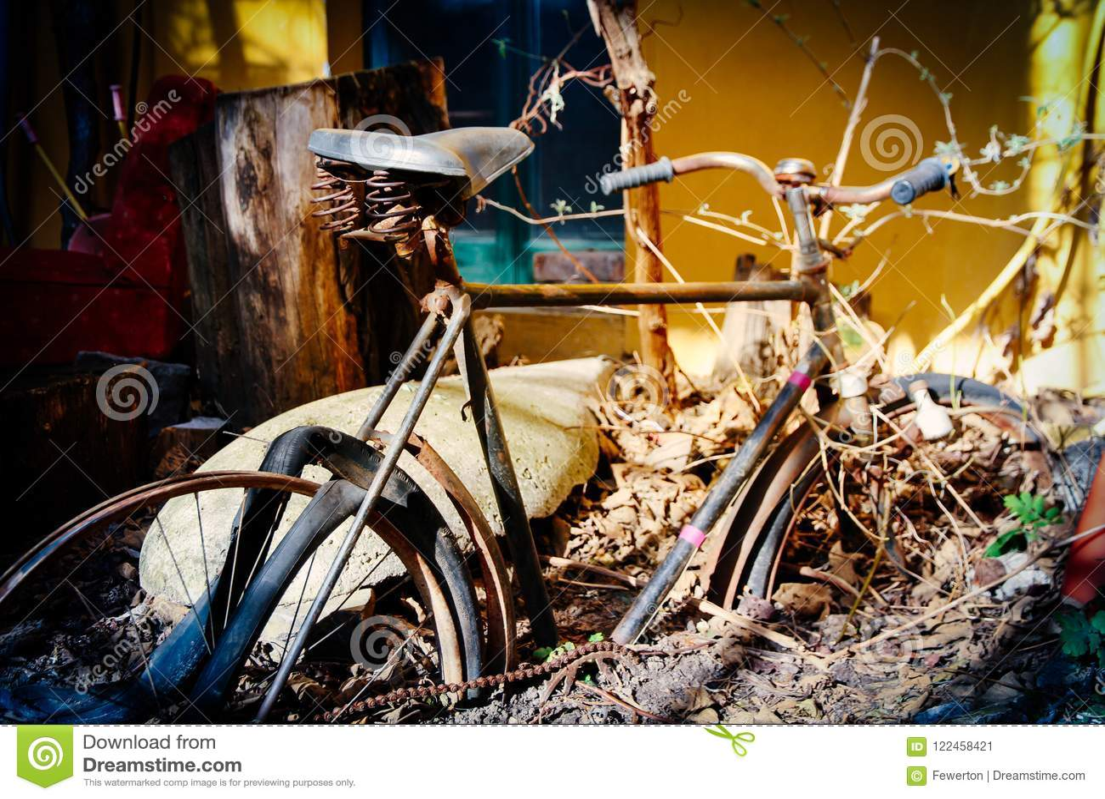 自行车地球报道的被放弃的保持生锈的减速火箭的葡萄酒自行车一半 为怀乡神色作用定调子的照片颜色