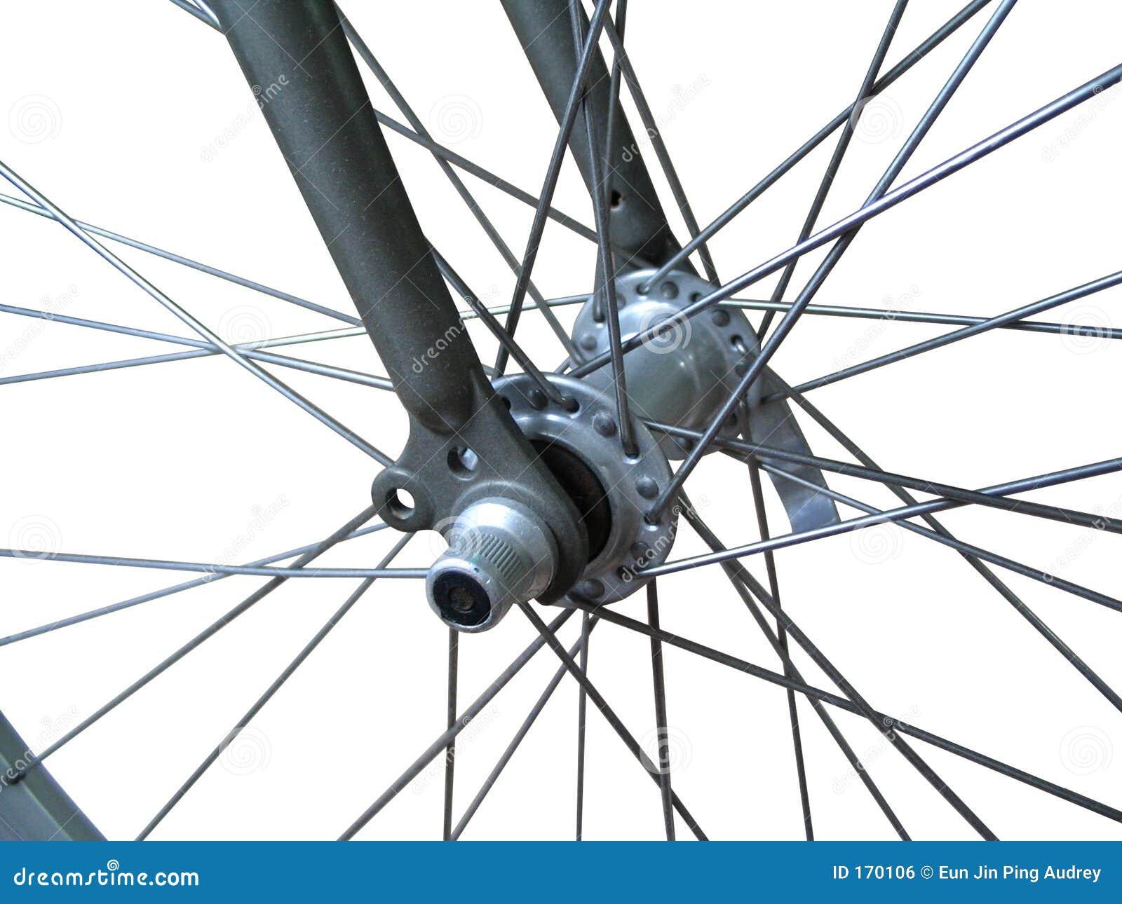 自行车查出的轮幅