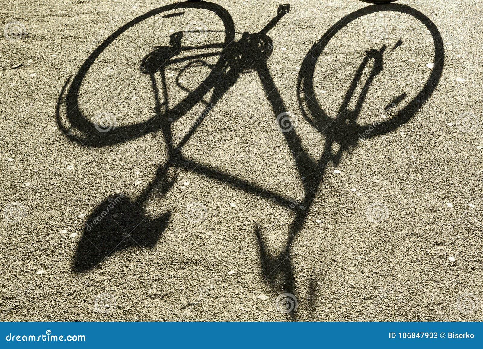 自行车的阴影