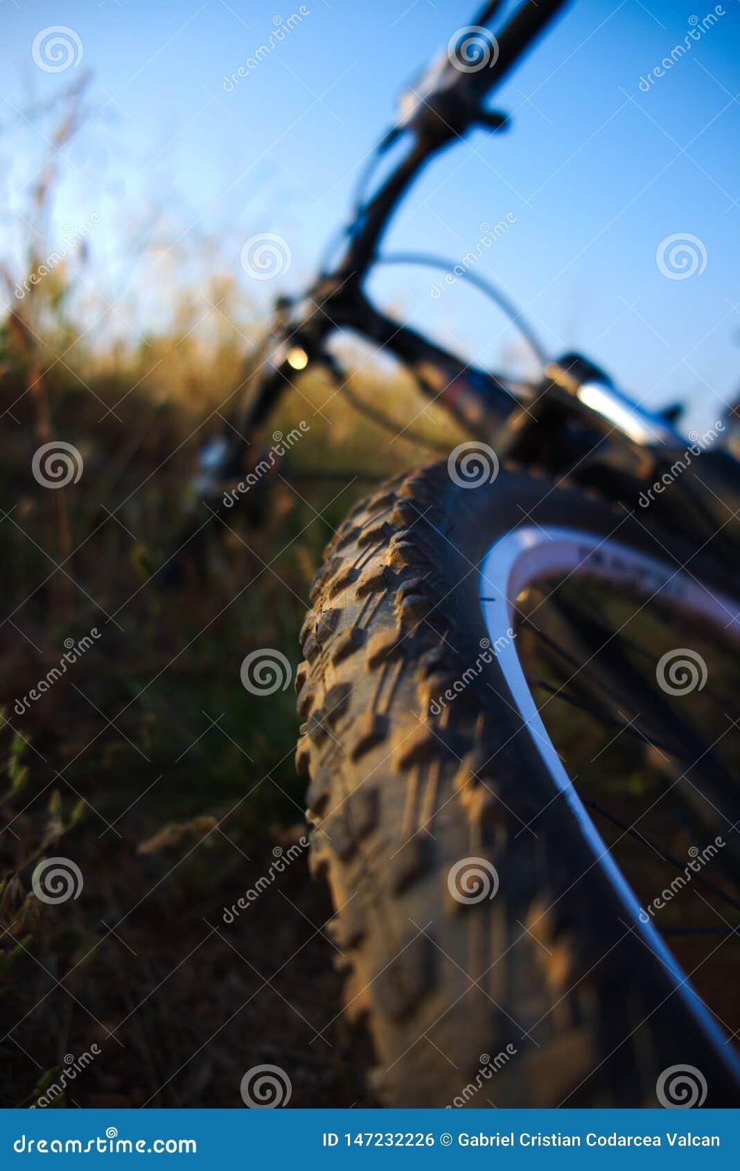 自行车视图从轮子方面