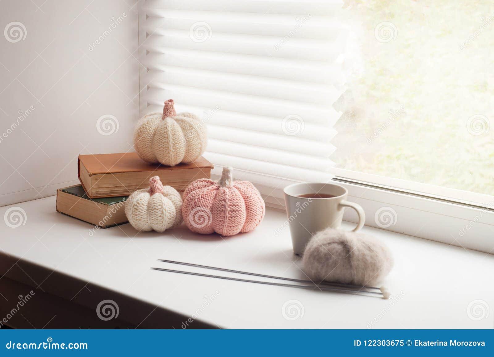 舒适和软的冬天,秋天,秋天背景,编织了装饰和书在窗台 圣诞节,感恩节在家