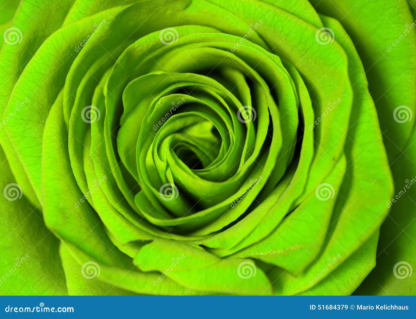 绿色上升了