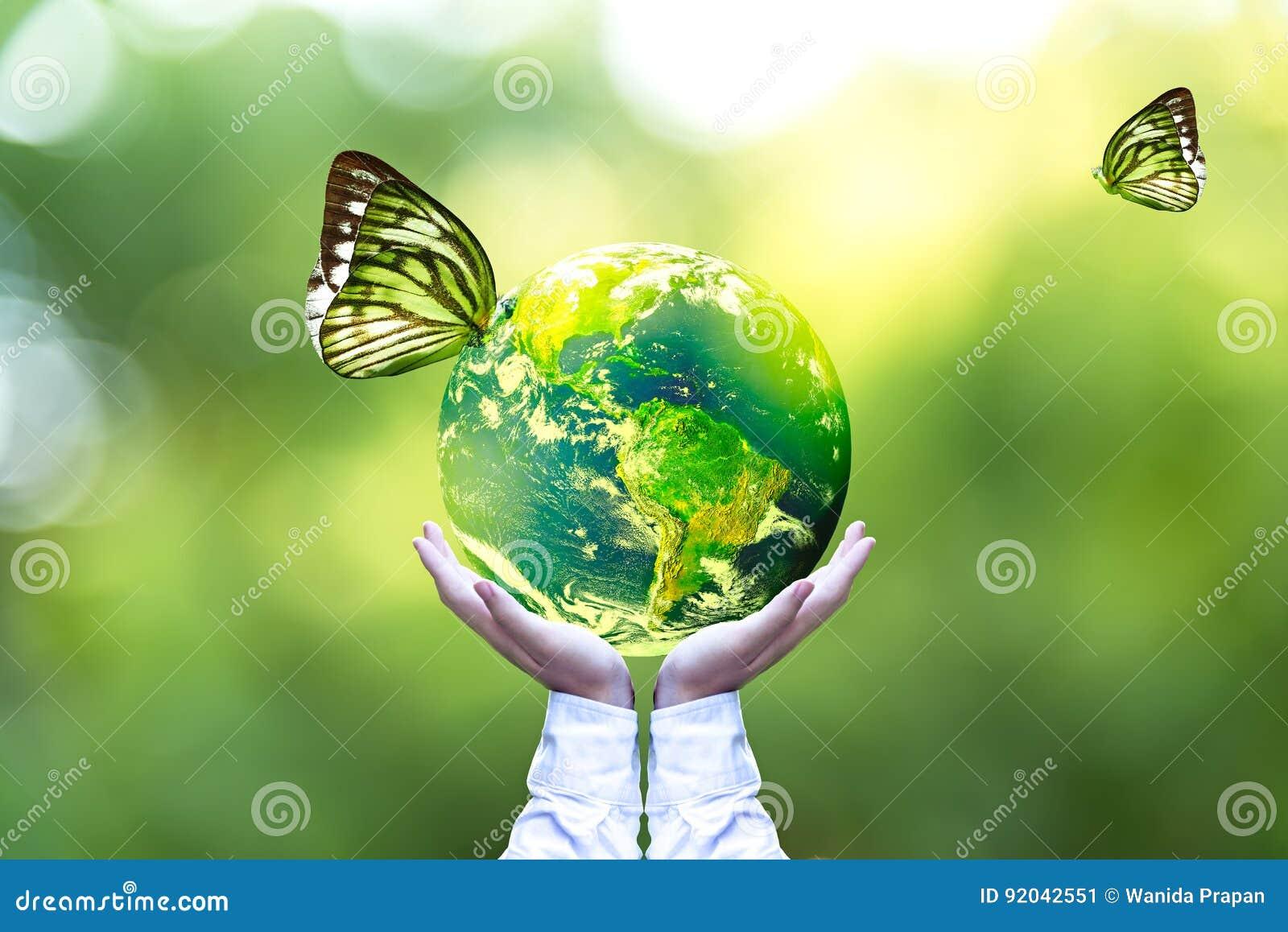 绿色世界和蝴蝶在人手,绿色背景上
