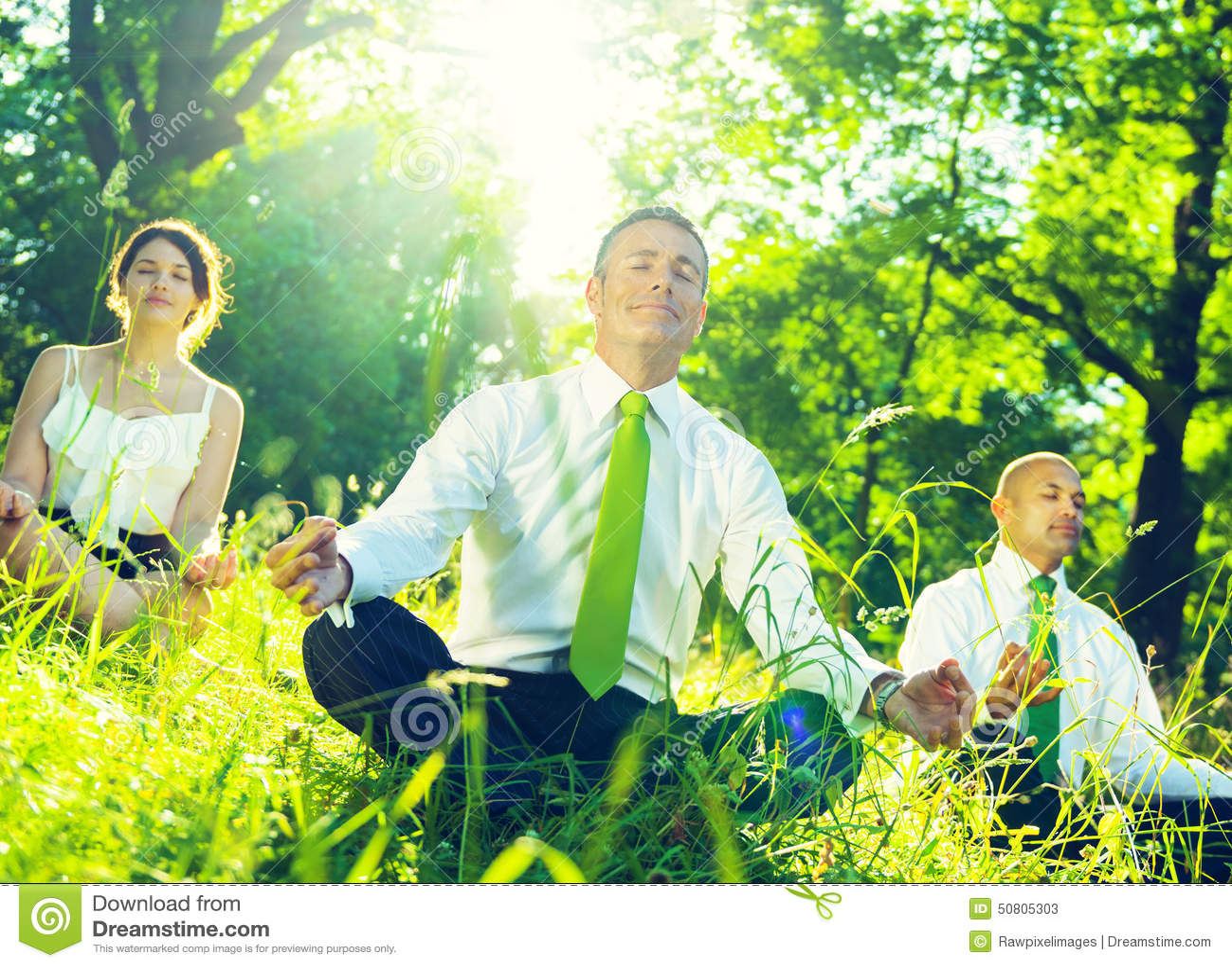 绿色企业队环境思考的概念